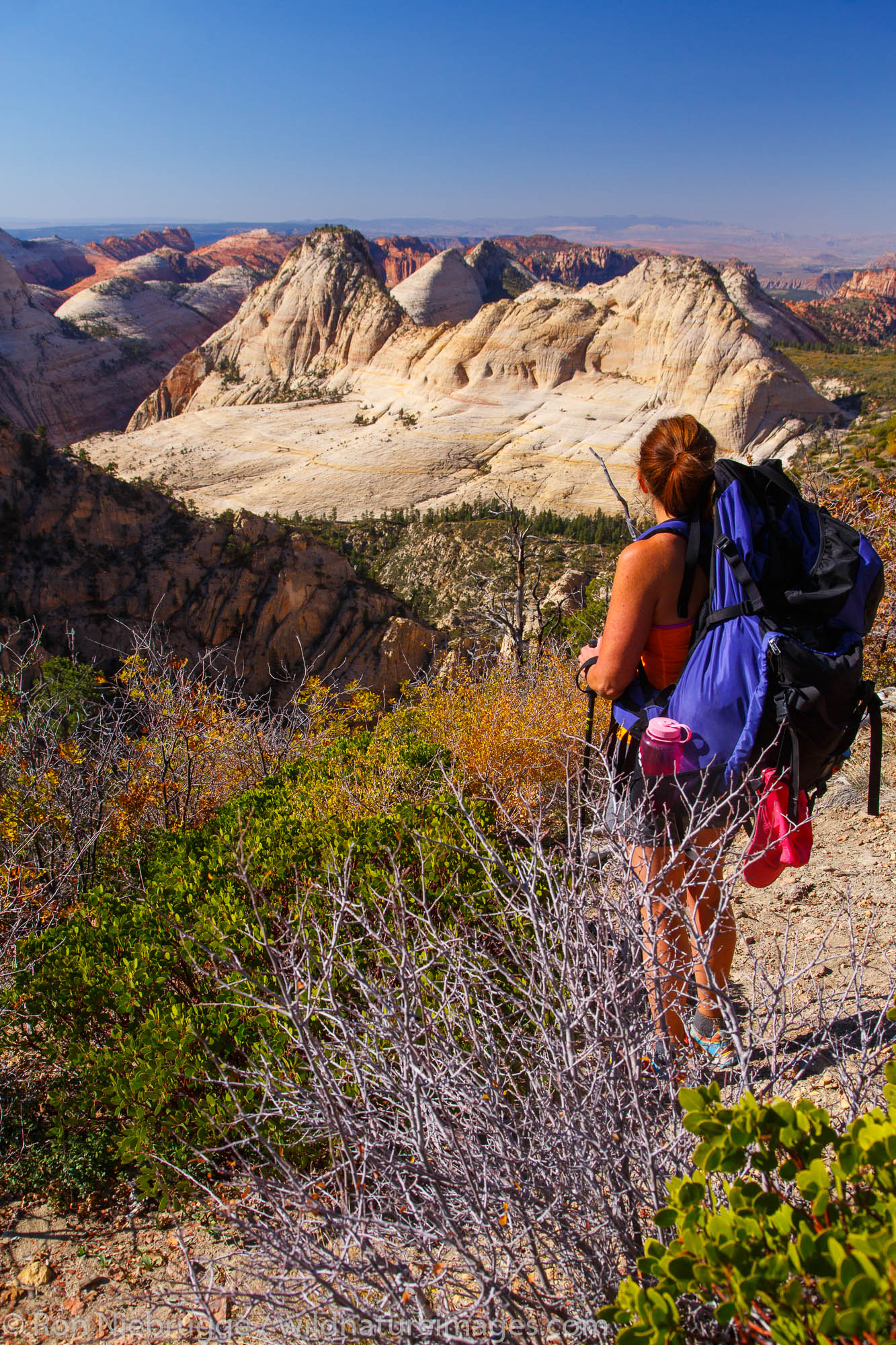 Backpacking on the West Rim Trail, Zion National Park, Utah.