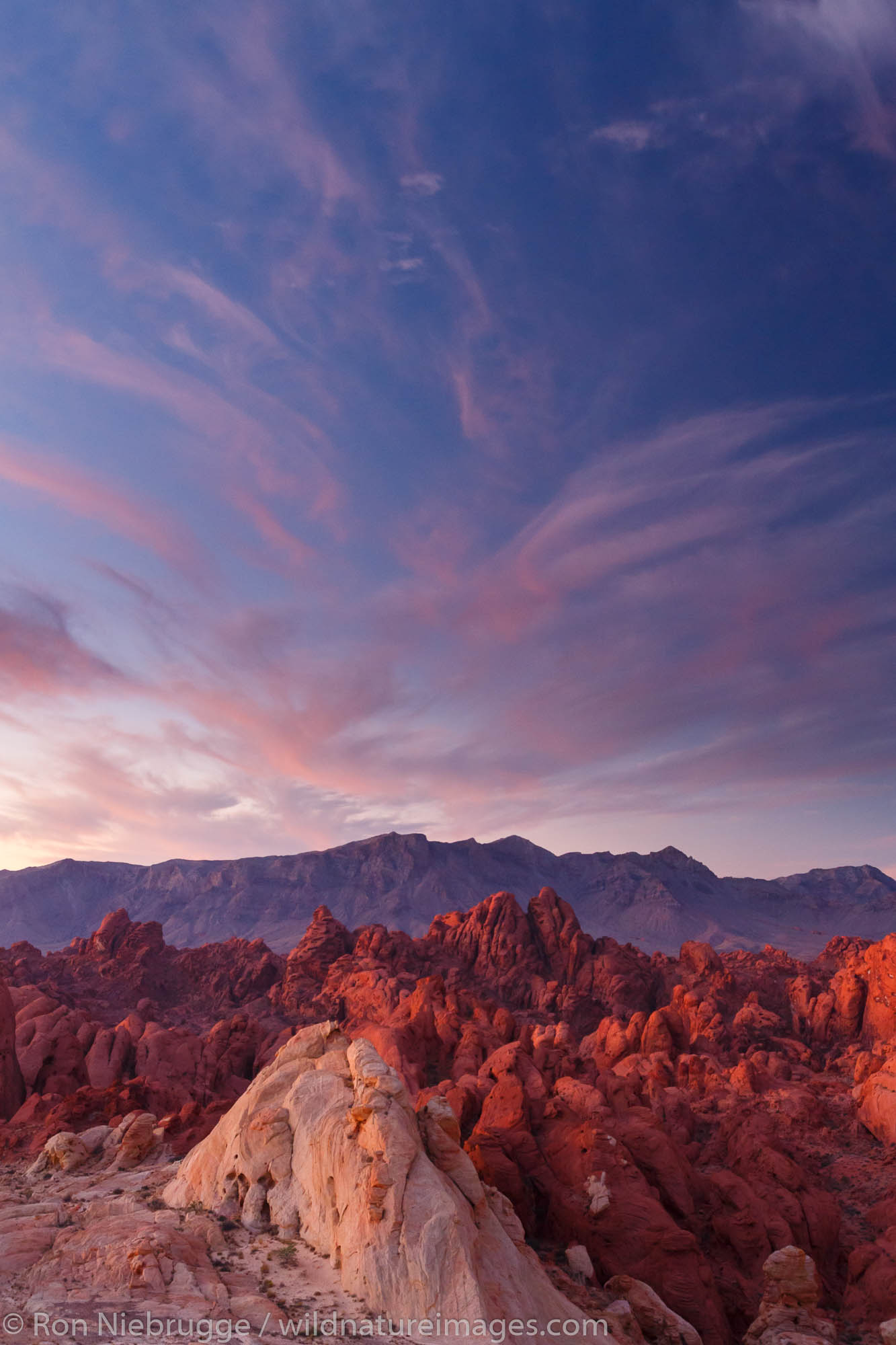 Sunrise over Silica Dome-Fire Canyon, Valley of Fire State Park, about 1 hour from Las Vegas, Nevada