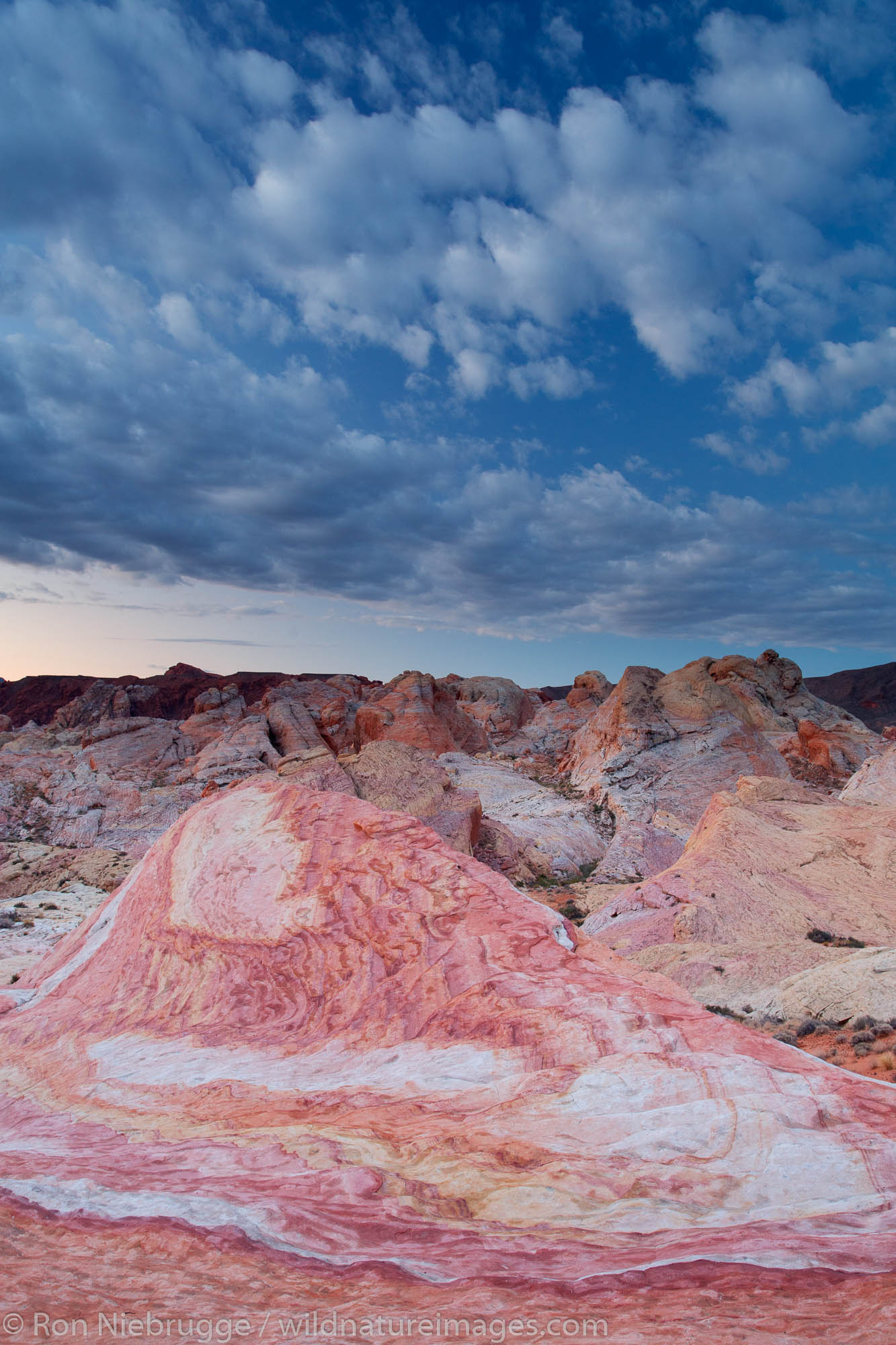 Colorful sandstone, Valley of Fire State Park, near Las Vegas, Nevada