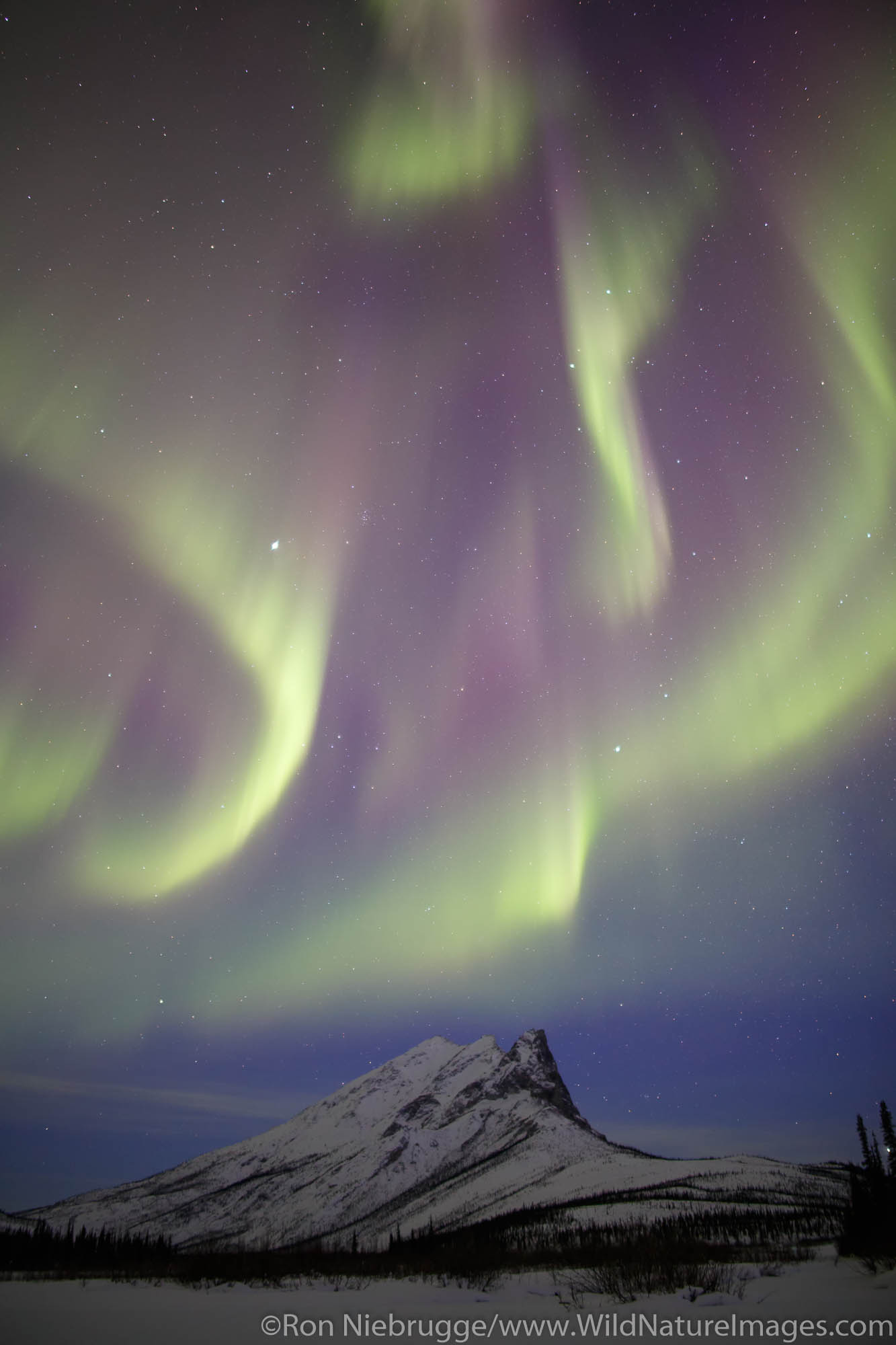 Arctic, Alaska, aurora, photo