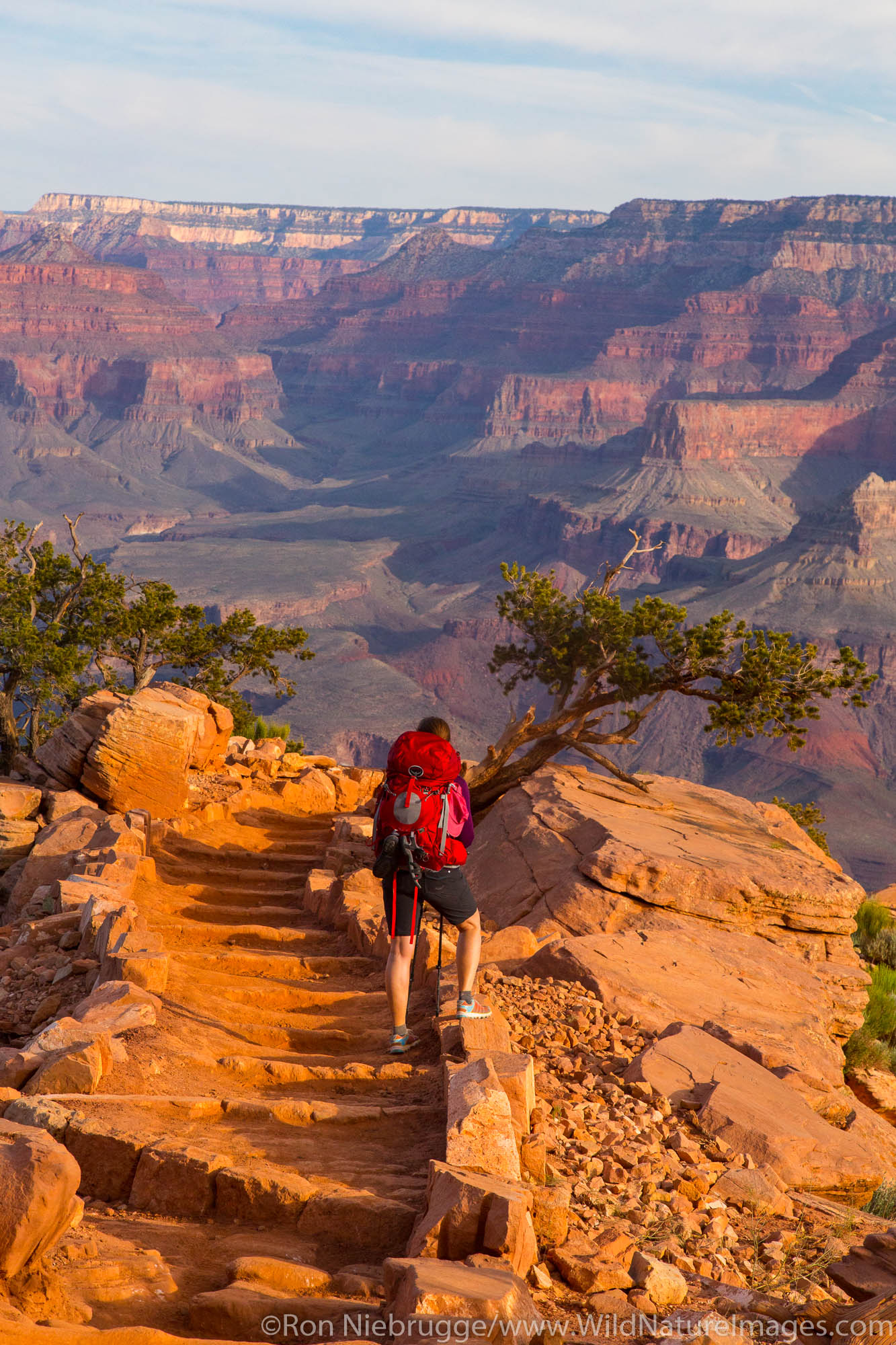 South Kaibab Trail, Grand Canyon National Park, Arizona.