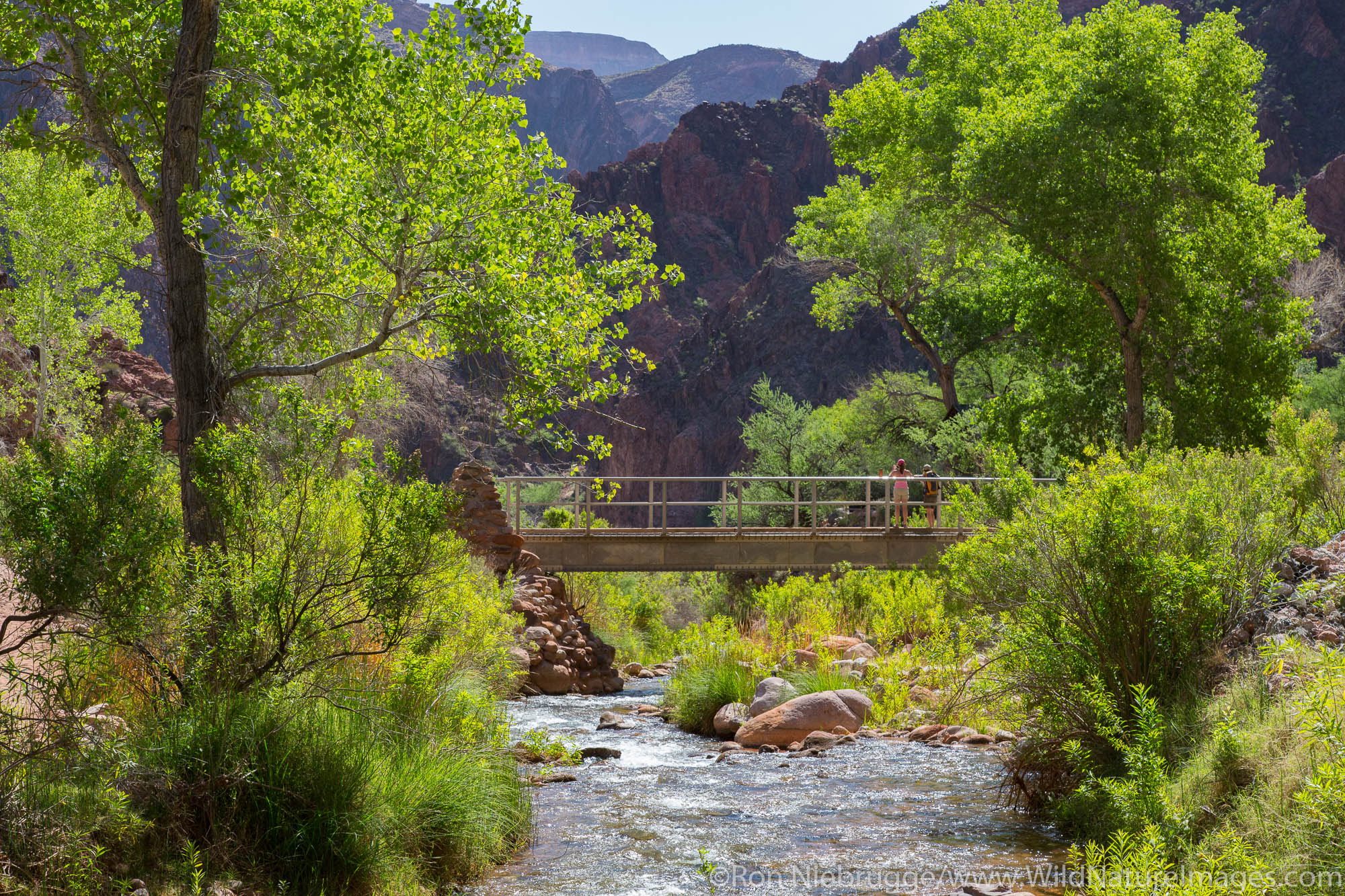 Bright Angel Campground, Grand Canyon National Park, Arizona.