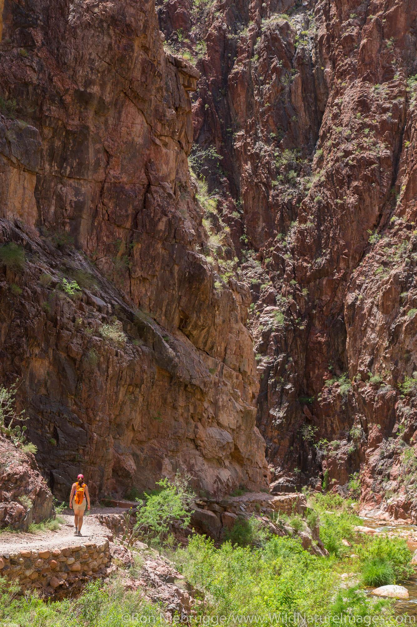 North Kaibab Trail, Grand Canyon National Park, Arizona.
