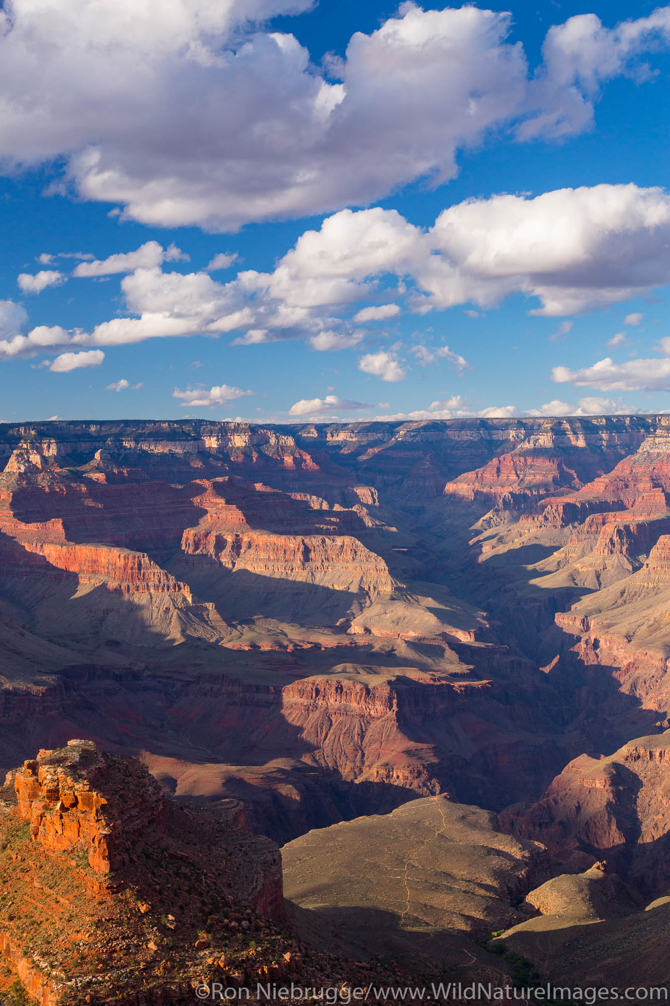 Trailview Overlook, Grand Canyon National Park, Arizona.
