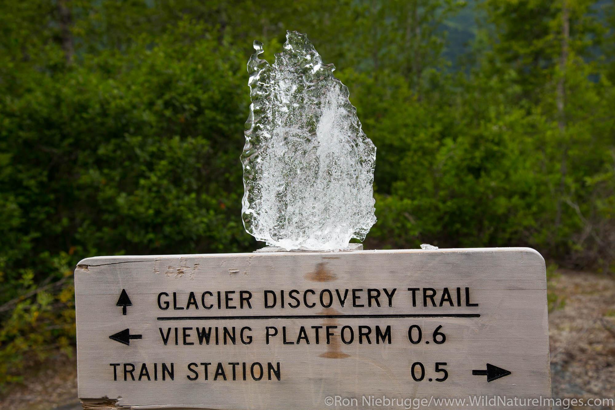 Spencer Glacier, Chugach National Forest, Alaska.