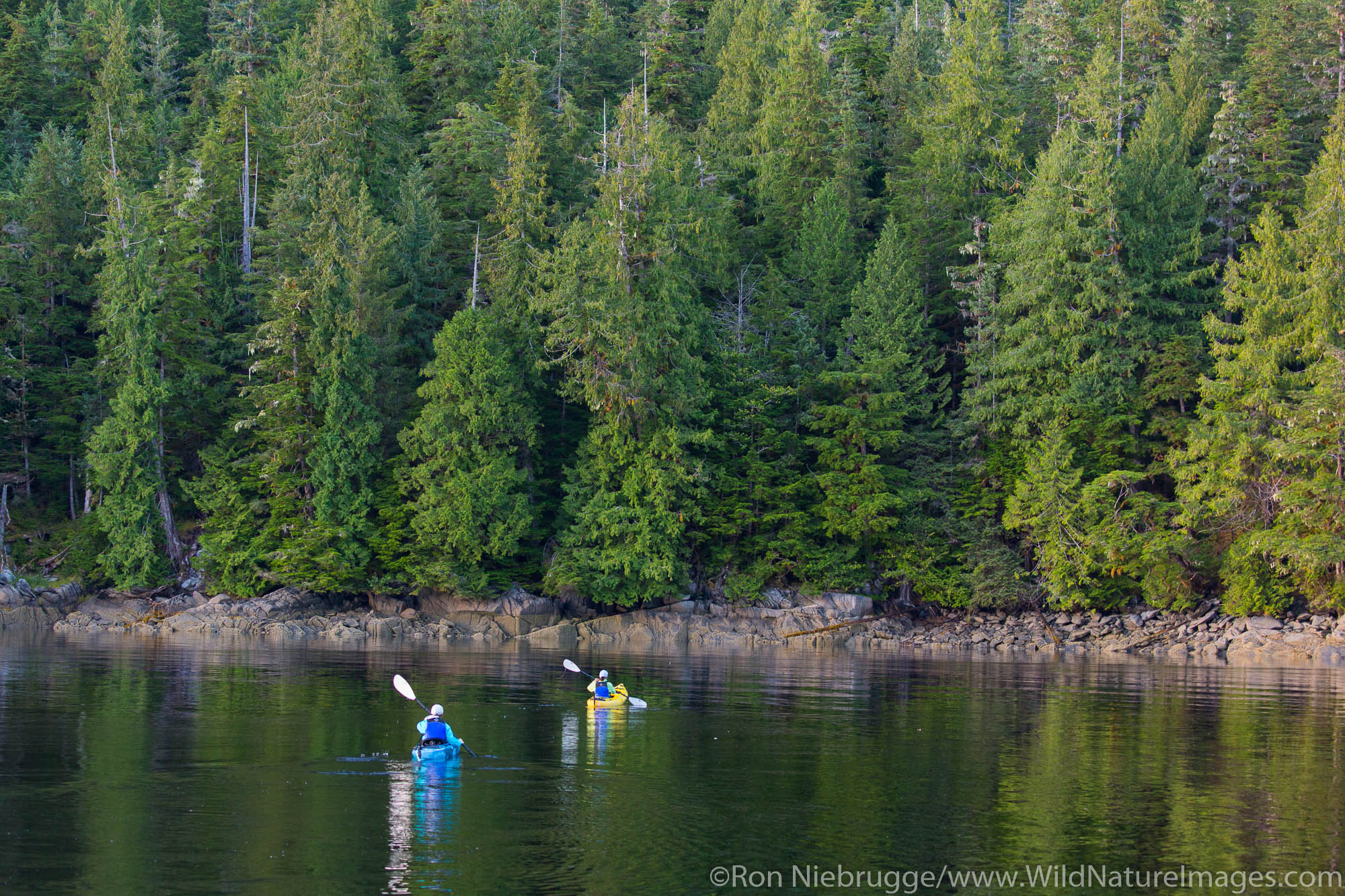 Kayaking in Tongass National Forest, Alaska.
