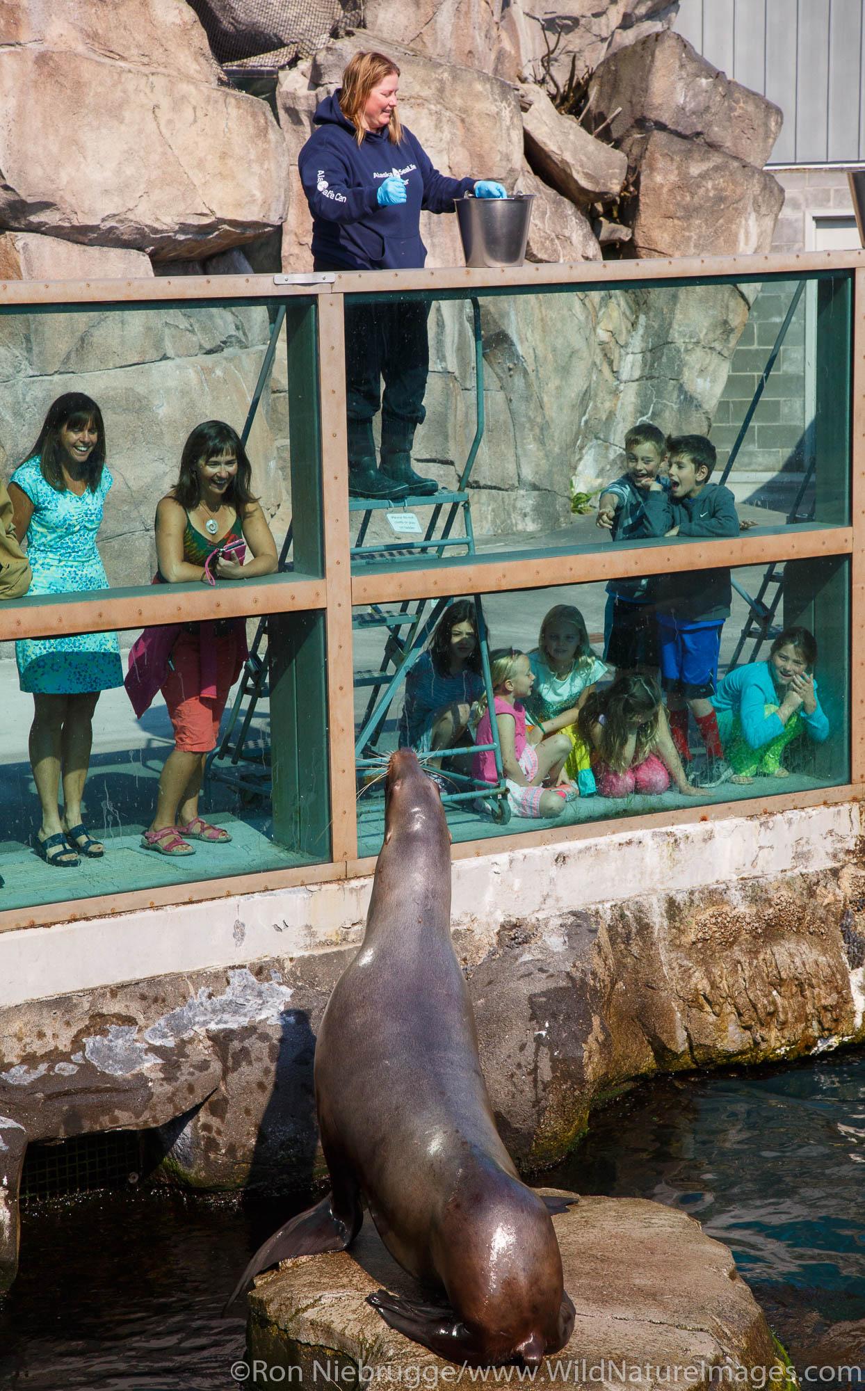 Kids at the Alaska SeaLife Center.  Seward, Alaska.