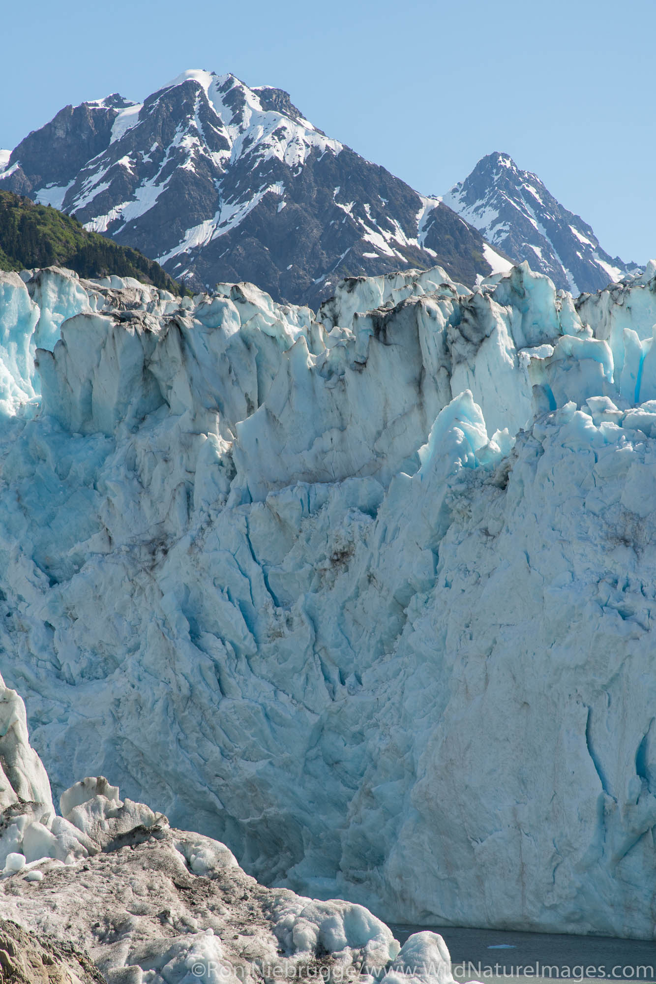 Meares Glacier, Prince William Sound, Chugach National Forest, Alaska.