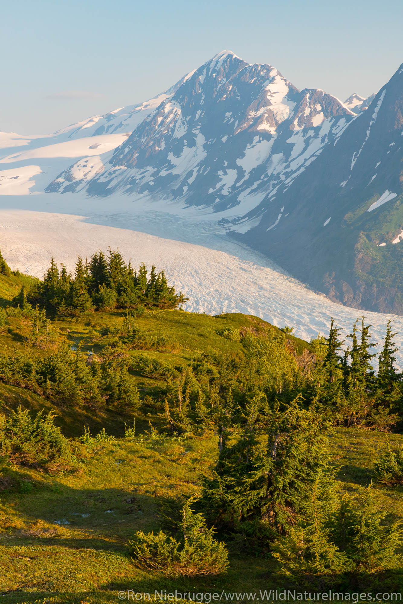 Spencer Glacier Bench, Chugach National Forest, Alaska.