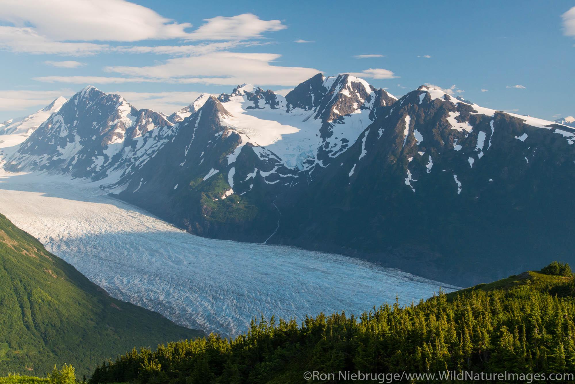 Spencer Glacier Bench, Chugach National Forest, Alaska.