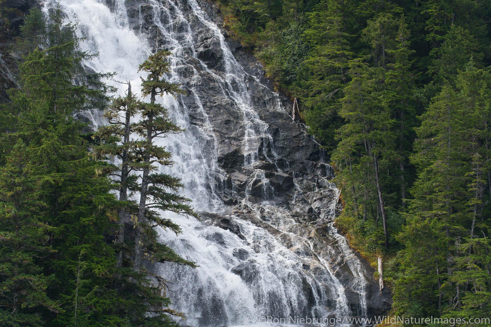 Tongass National Forest, Inside Passage, Alaska, photo