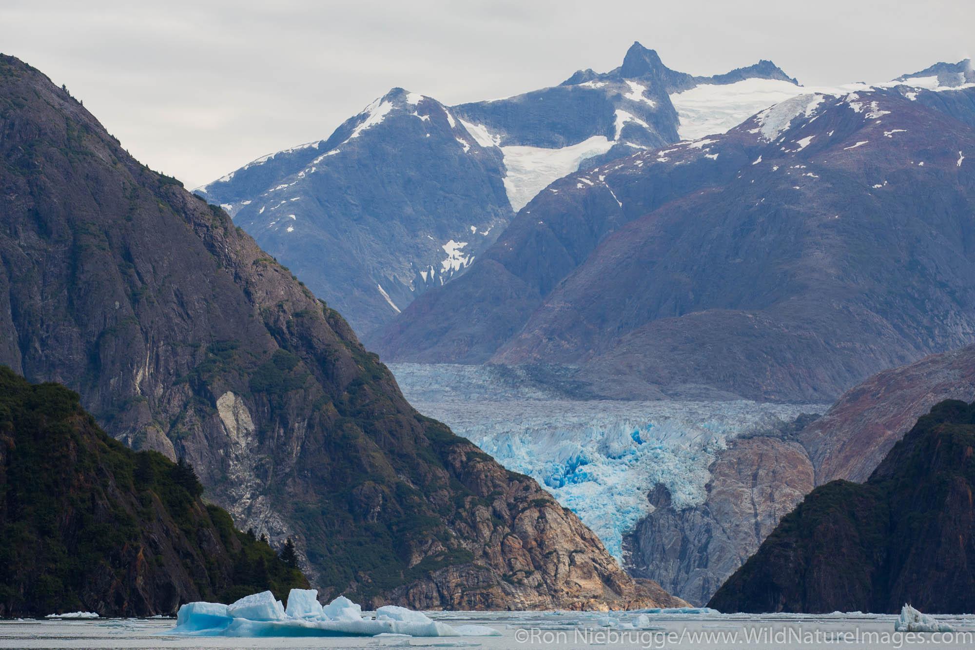 South Sawyer Glacier, Tracy Arm, Tongass National Forest, Alaska.