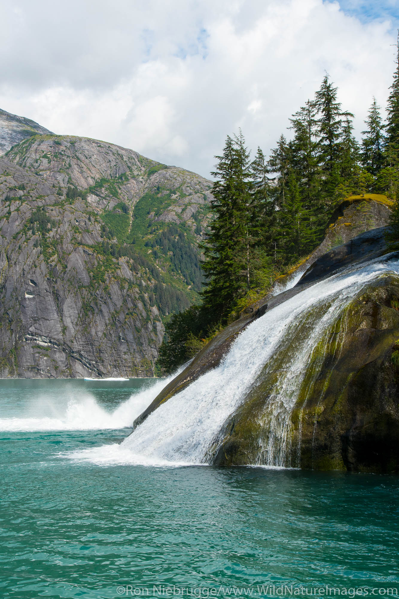 Tracy Arm, Tongass National Forest, Alaska.