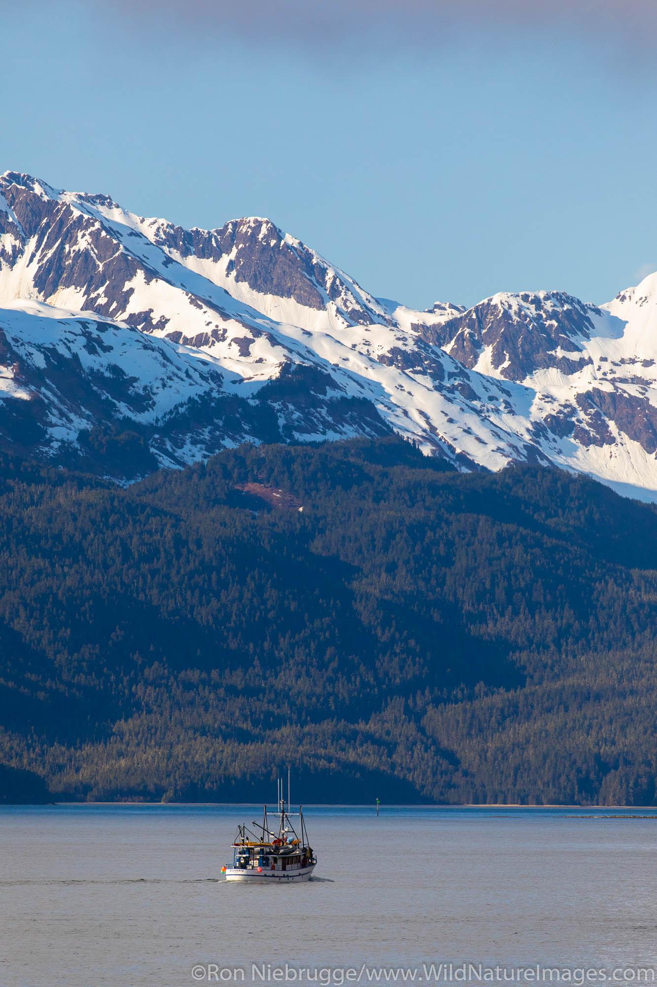 Copper River Delta, Chugach National Forest, Cordova, Alaska.