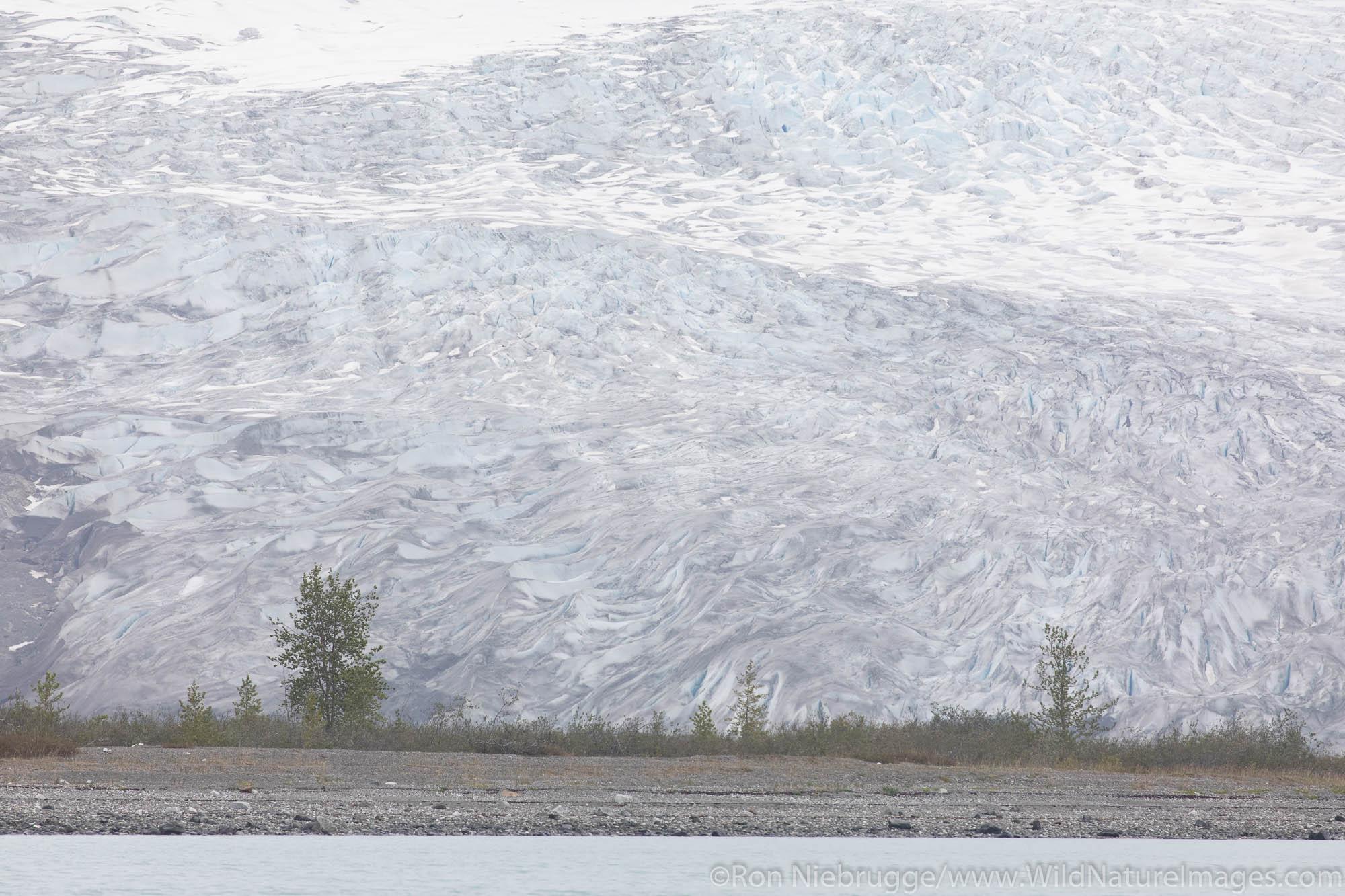 Reid Glaicer, Glacier Bay National Park, Alaska.