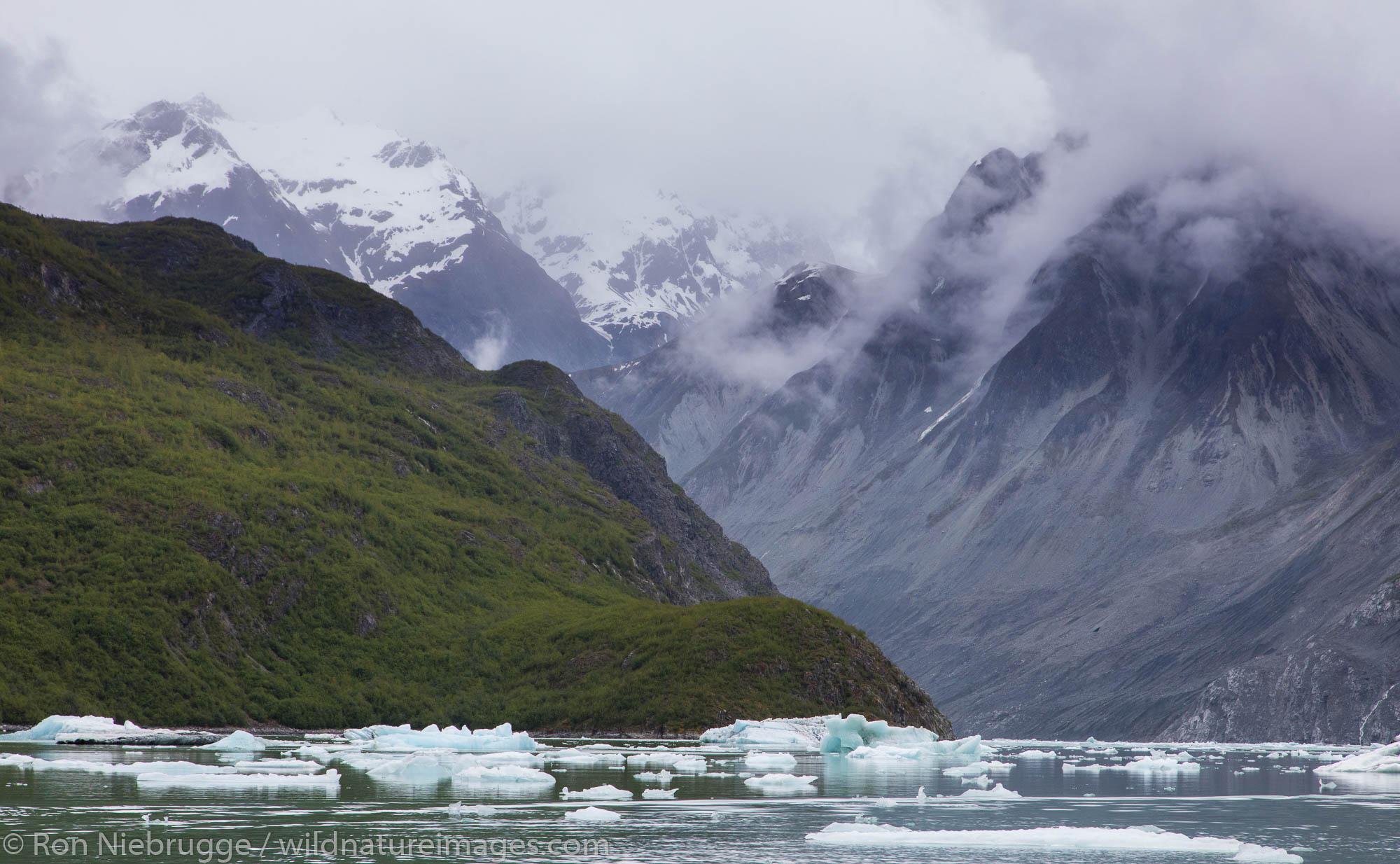 Mc Bride Glacier, Glacier Bay National Park, Alaska.