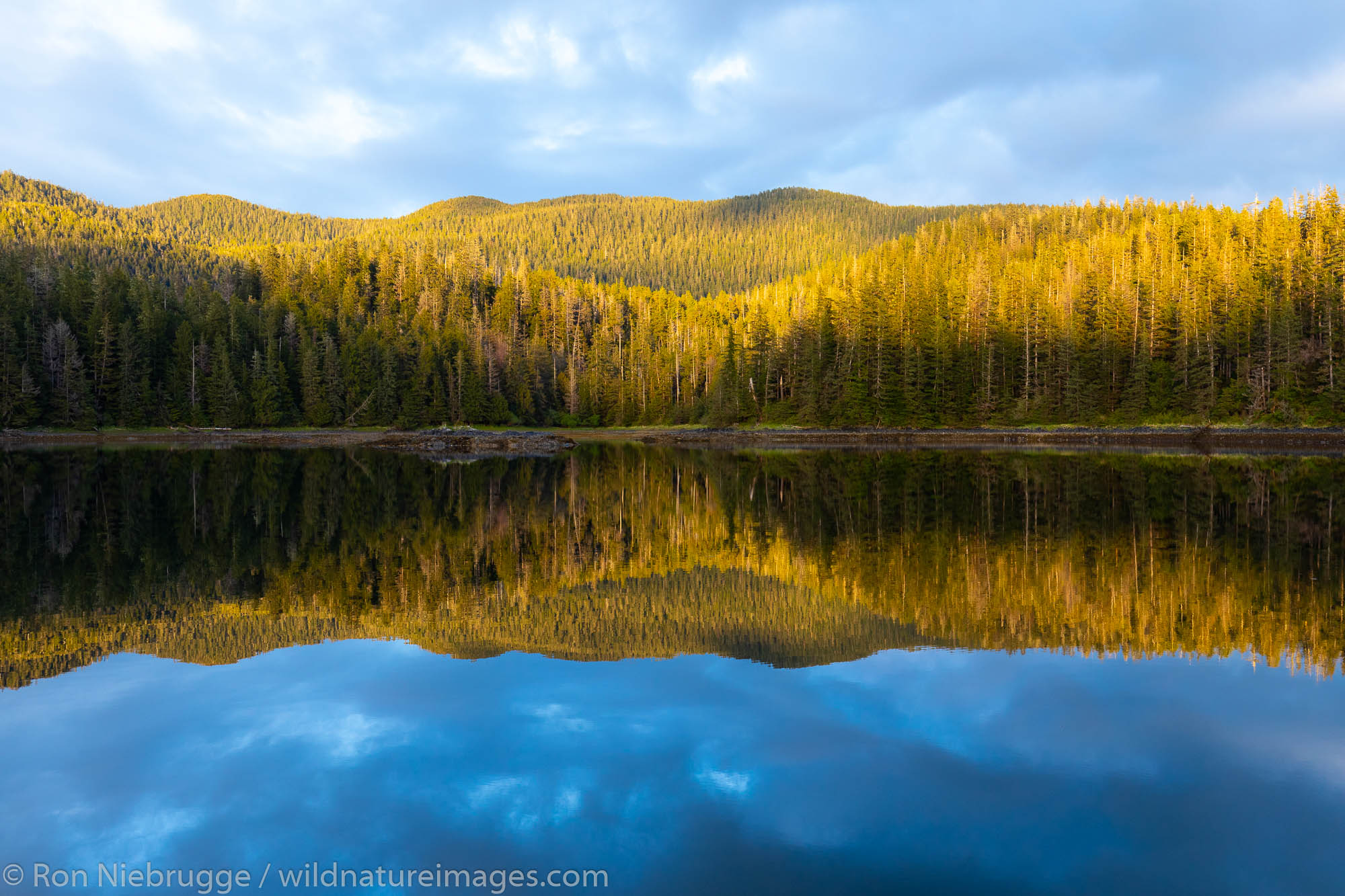 Tongass National Forest, Alaska.