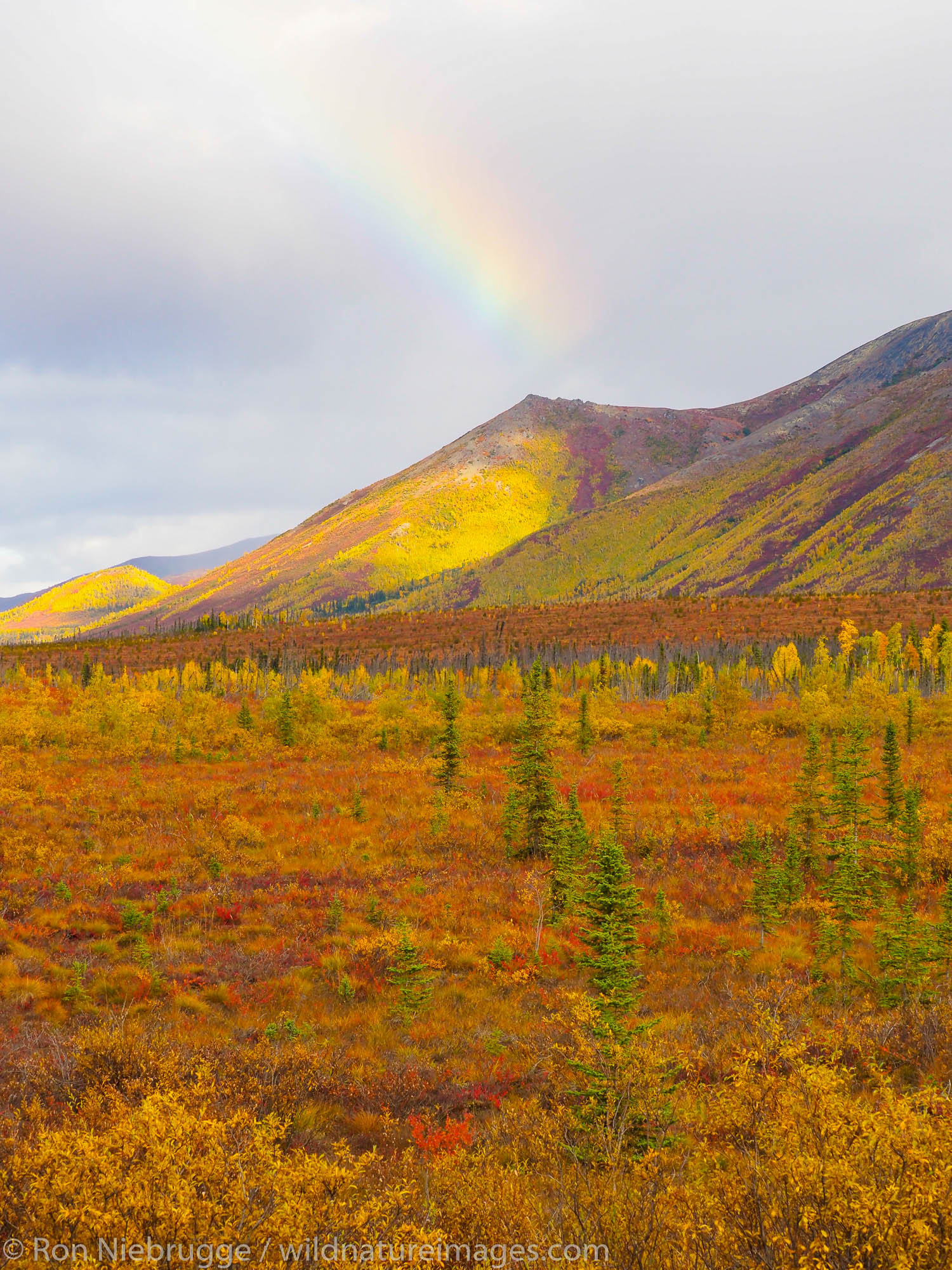 Arctic, Alaska, rainbow, photo