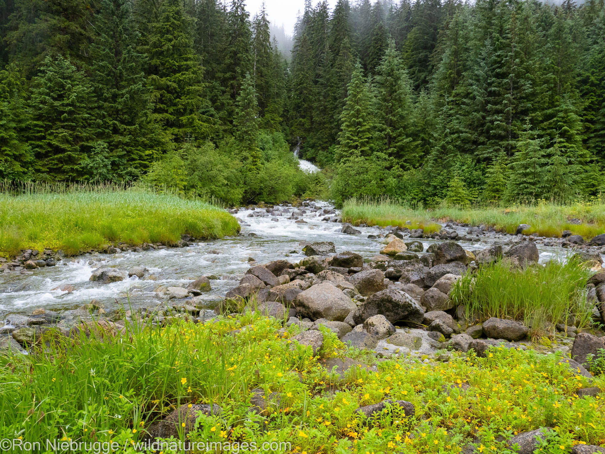 Ford's Terror, Tongass National Forest, Alaska.