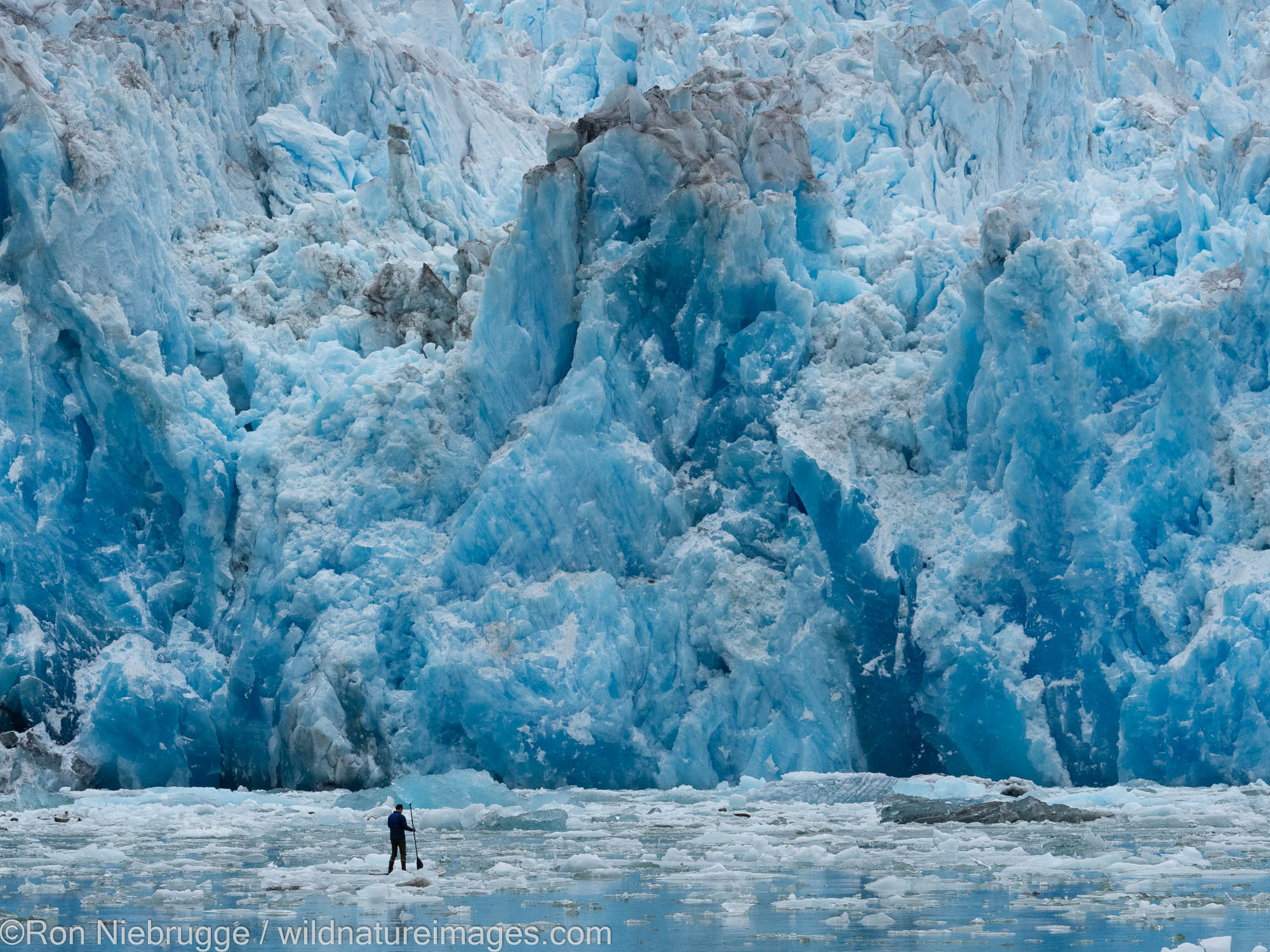 Stand up Paddle Board, Sawyer Glacier in Tracy Arm, Tongass National Forest, Alaska.