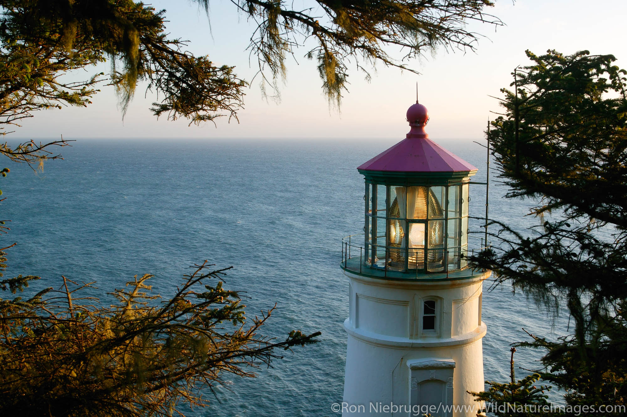 Heceta Head Lighthouse, Oregon, photo