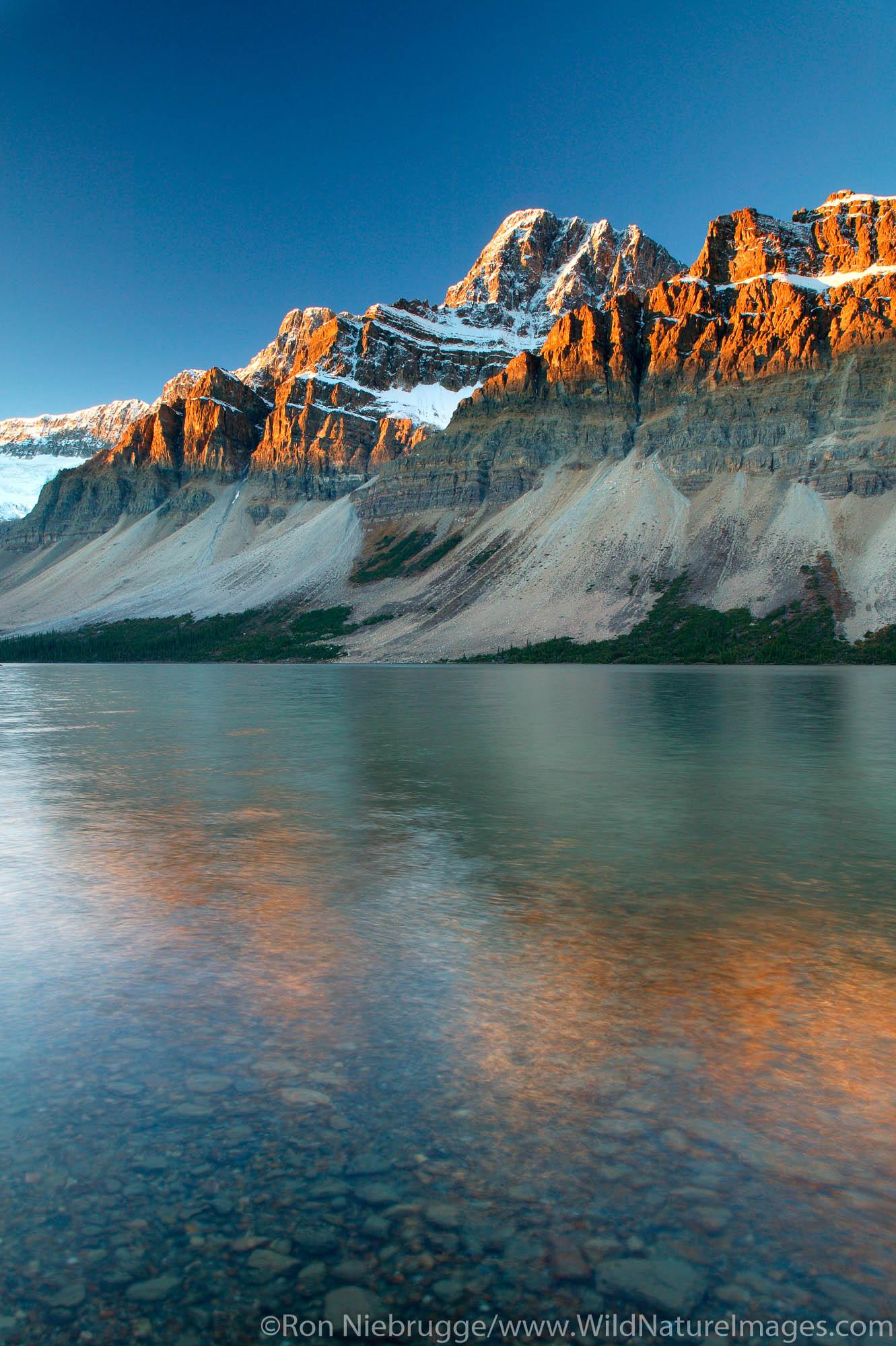 Crowfoot Mountain and Bow Lake at sunrise, Banff National Park, Alberta, Canada.
