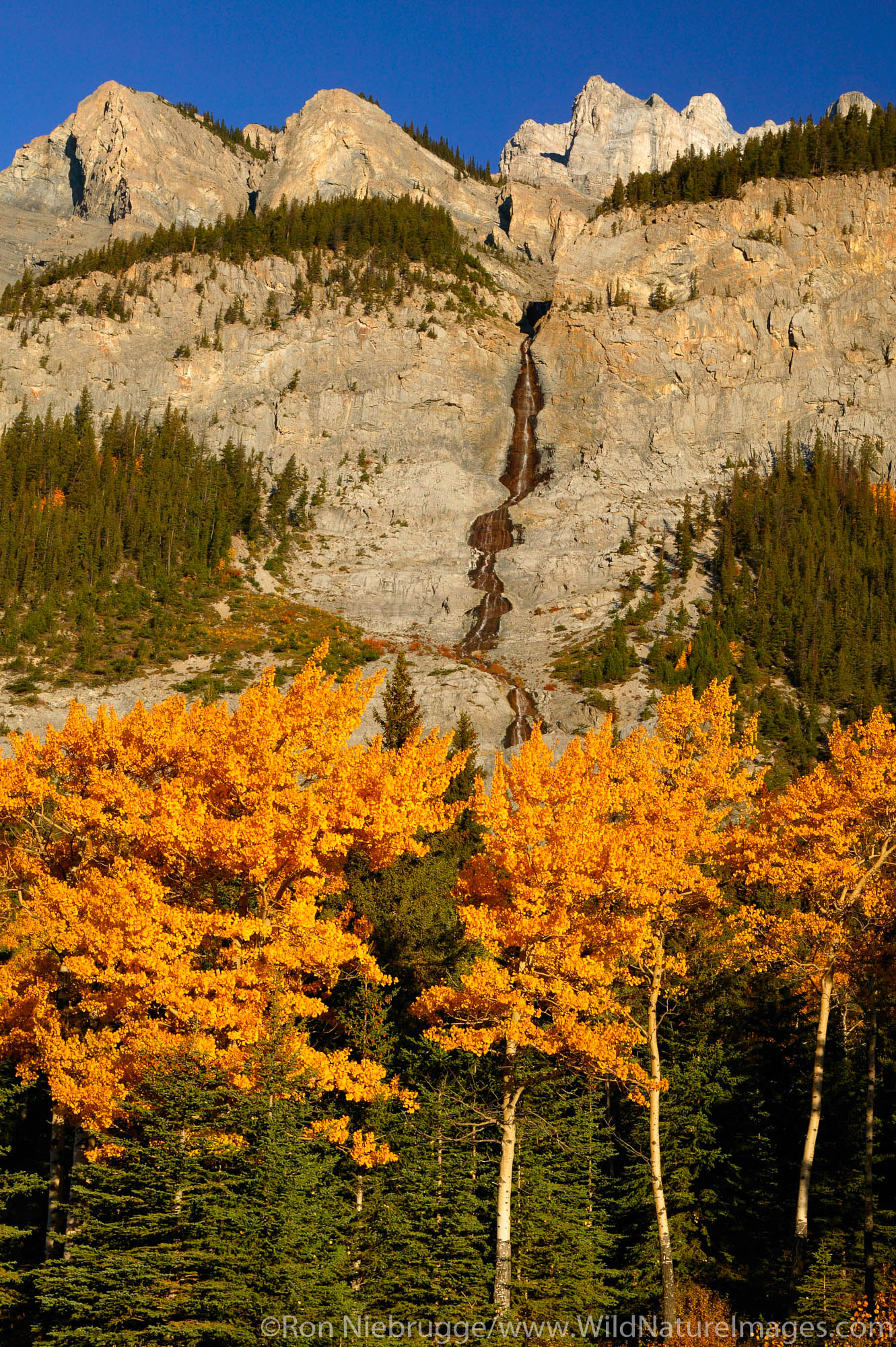 A waterfall flows down the face of Cascade Mountain (2,997 m) in the fall, Banff National Park, Alberta, Canada.