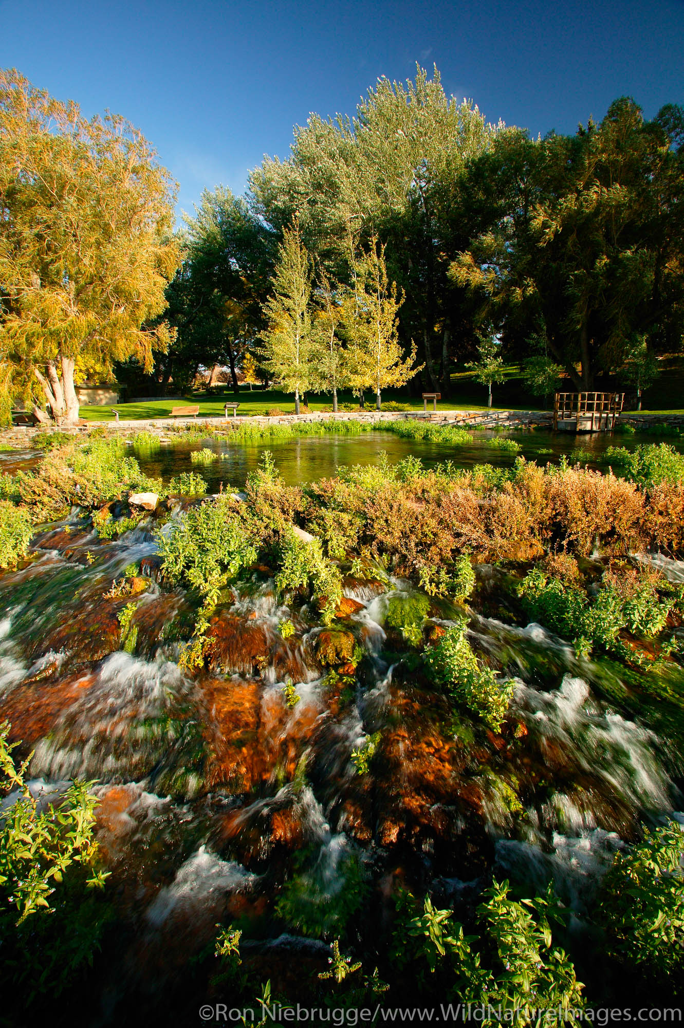 This Spring, originally discovered by Lewis and Clark is one of the most productive springs in the world, Giant Spring Heritage...