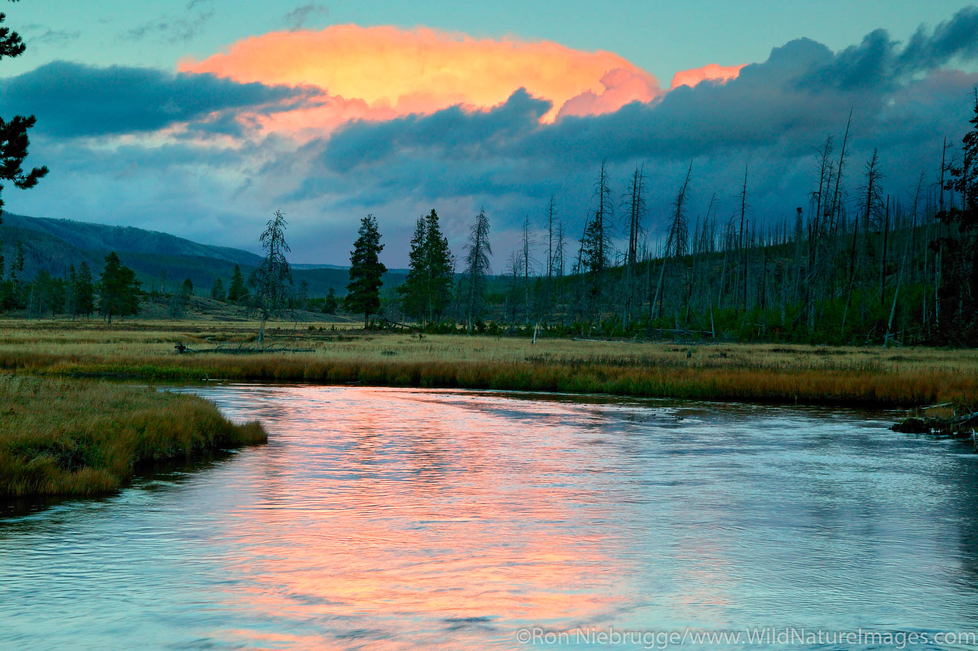 Sunset on the Gibbon River near Madison, Yellowstone National Park, Wyoming.