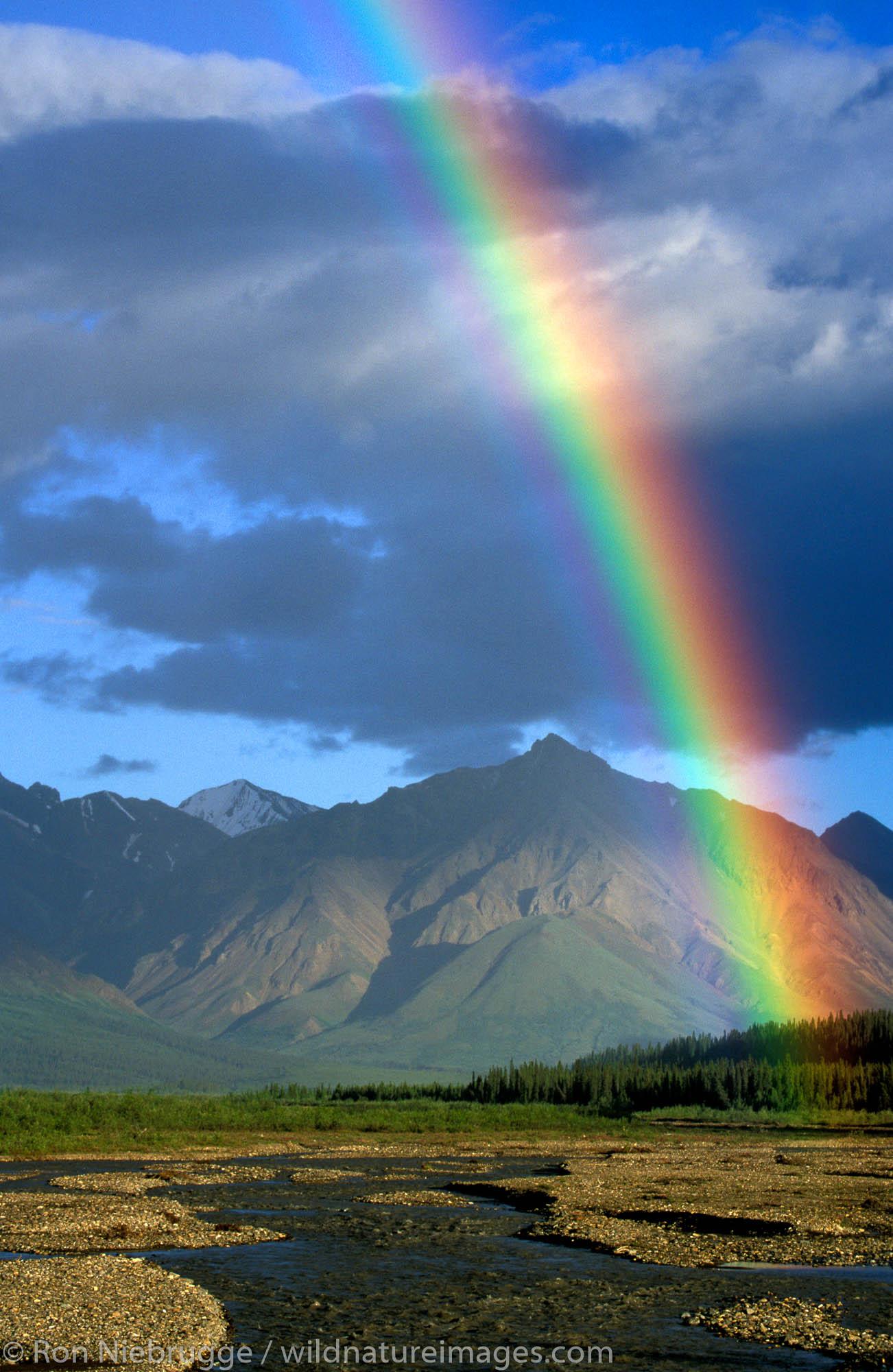 Rainbow in Denali National Park, Alaska.