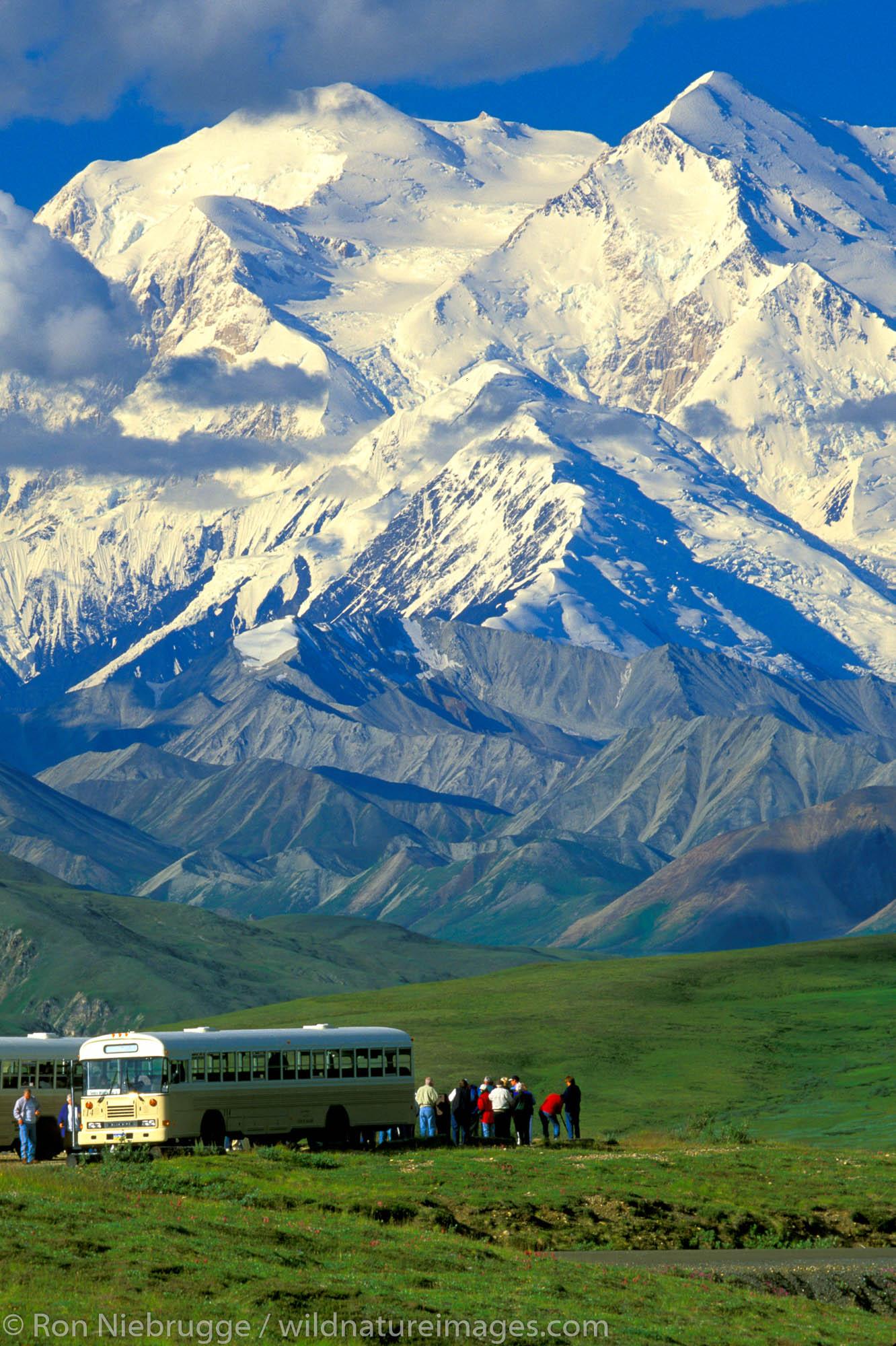 "Mt. McKinley ""Denali"" with Tour Buses at Stony Dome.  Denali National Park, Alaska."