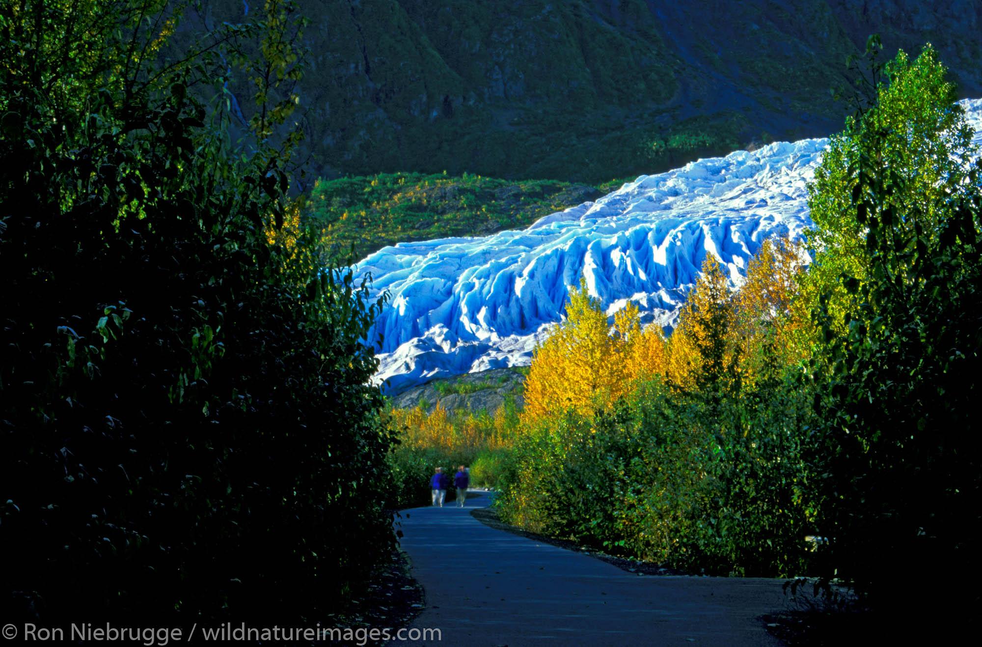 Autumn at Exit Glacier, Kenai Fjords National Park, near Seward Alaska.
