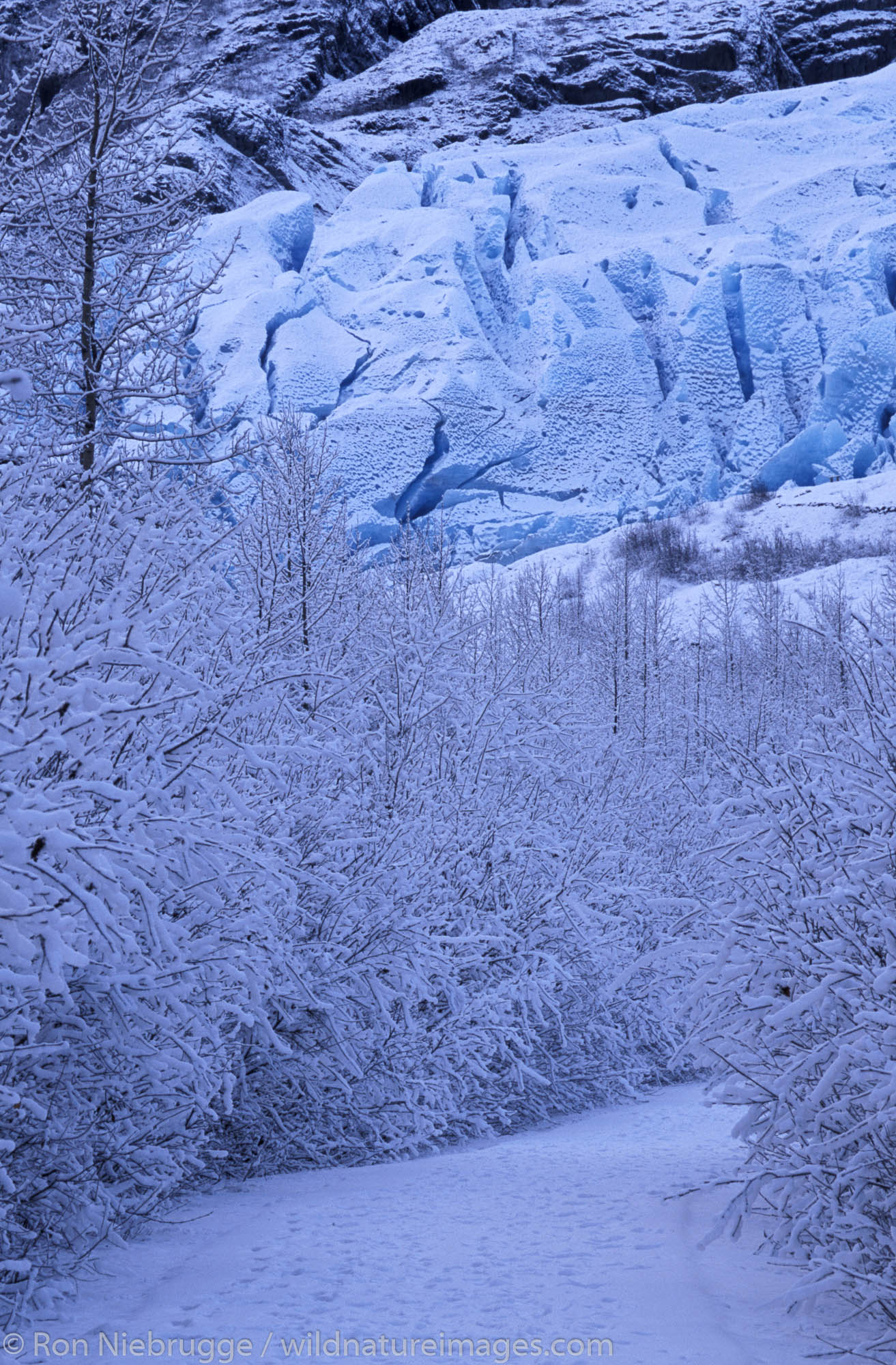 Exit Glacier during the winter, Kenai Fjords National Park, near Seward Alaska.