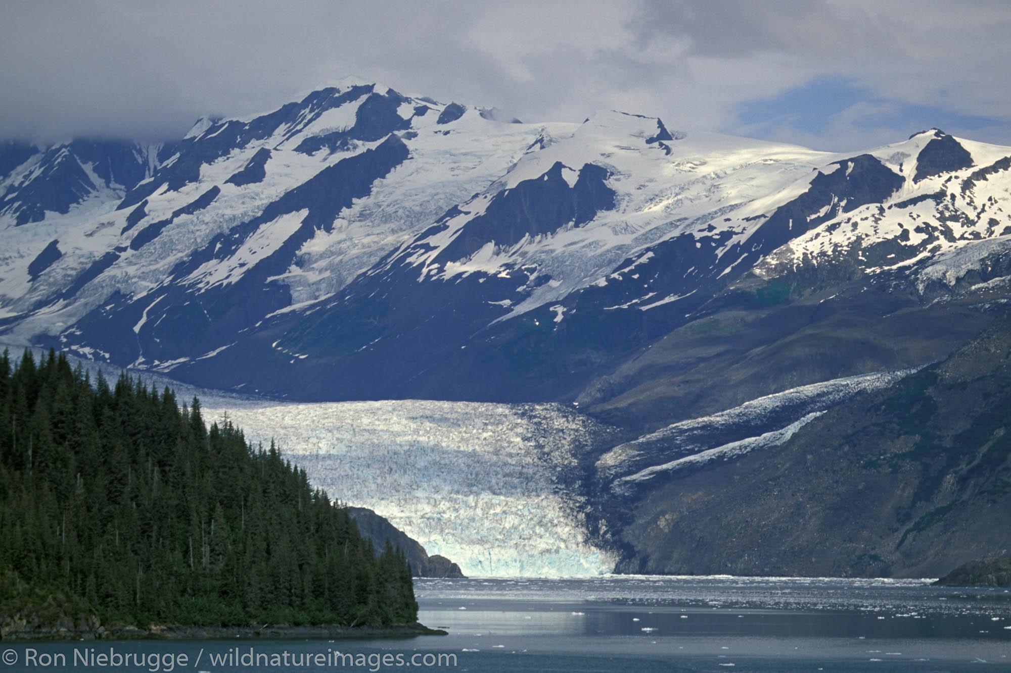 John Hopkins Glacier, Glacier Bay National Park, Alaska.