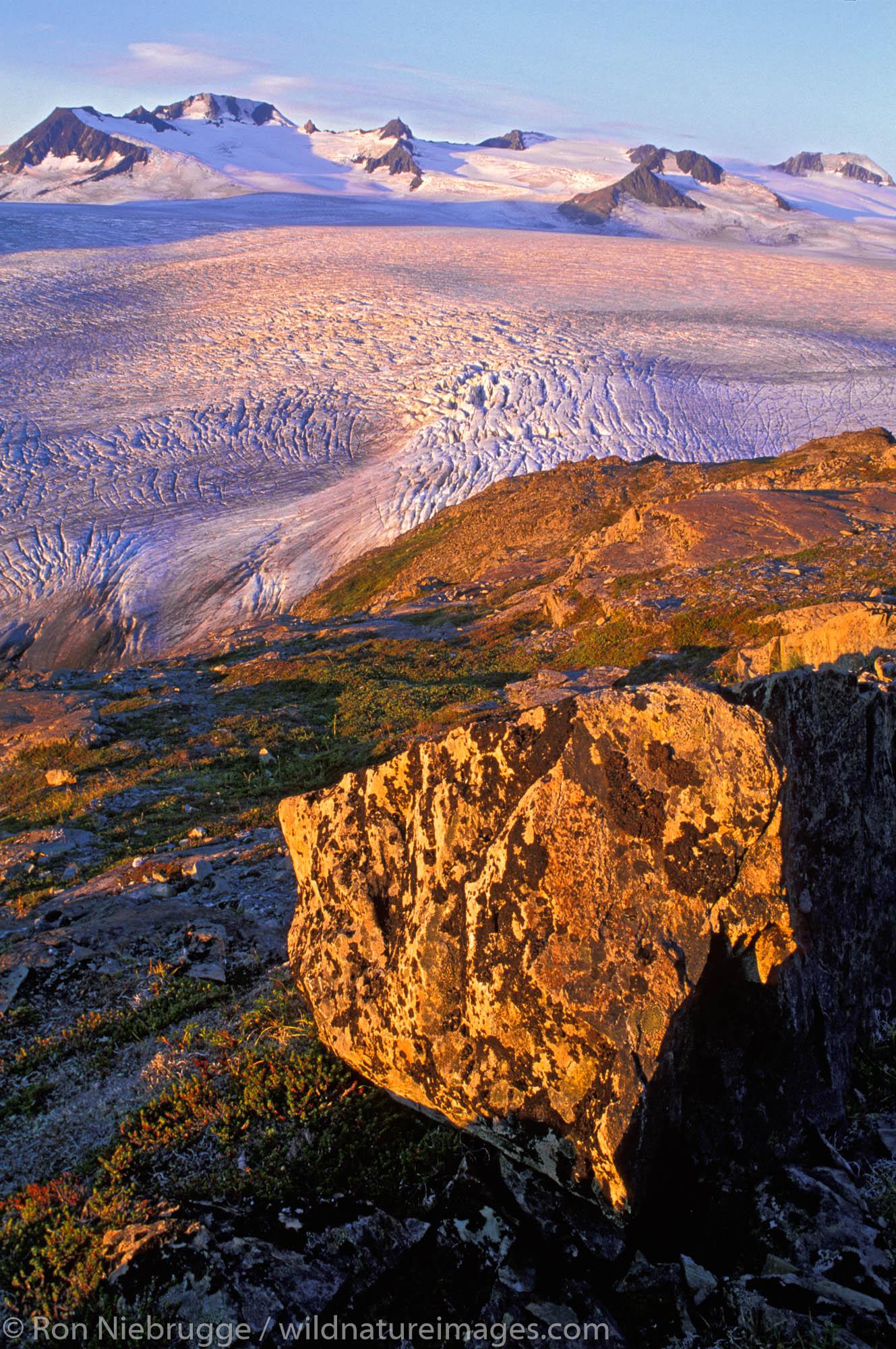 The Harding Icefield and Exit Glacier at sunrise, Kenai Fjords National Park, Alaska.