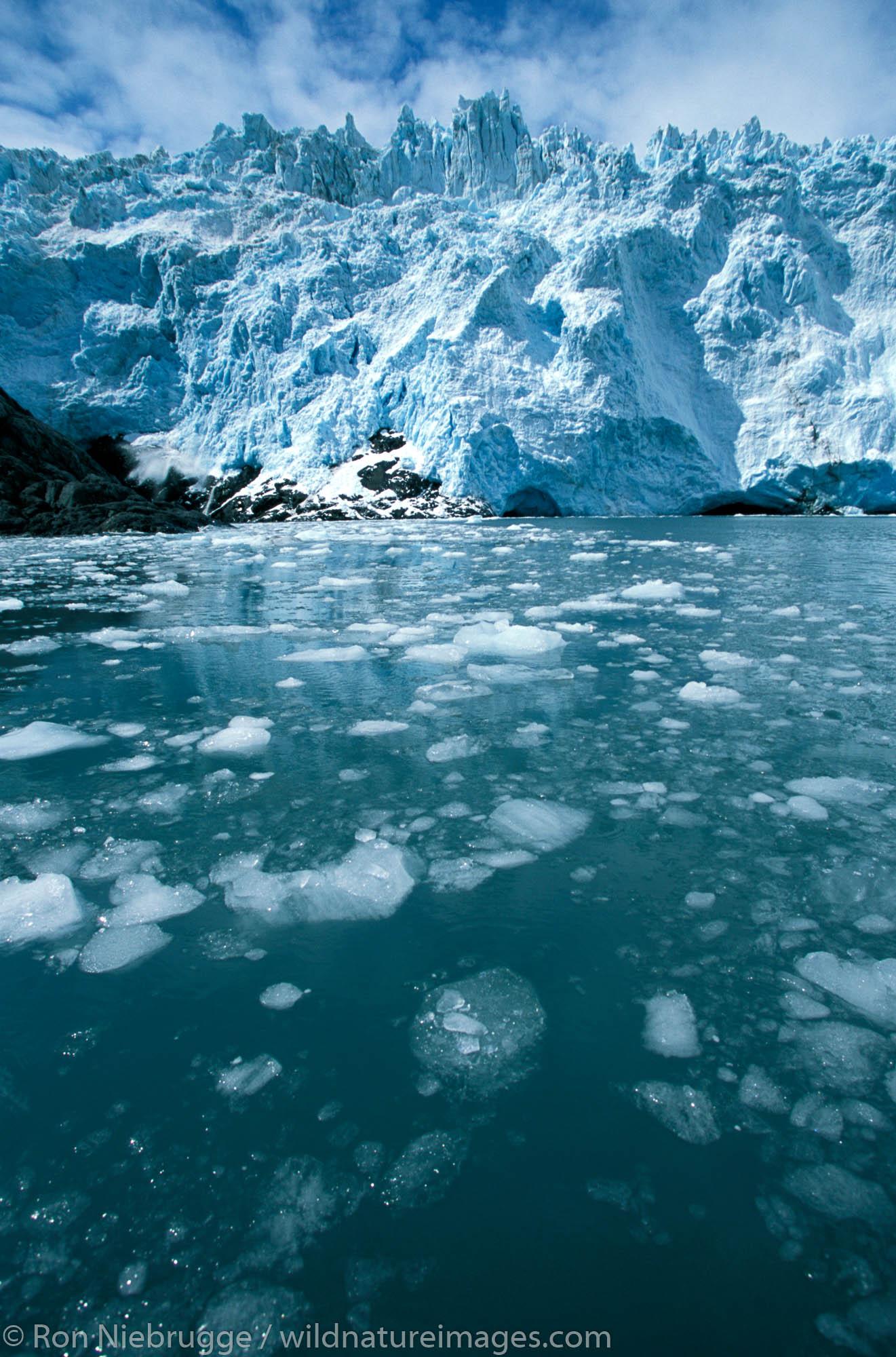 Holgate Glacier, Kenai Fjords National Park, Alaska