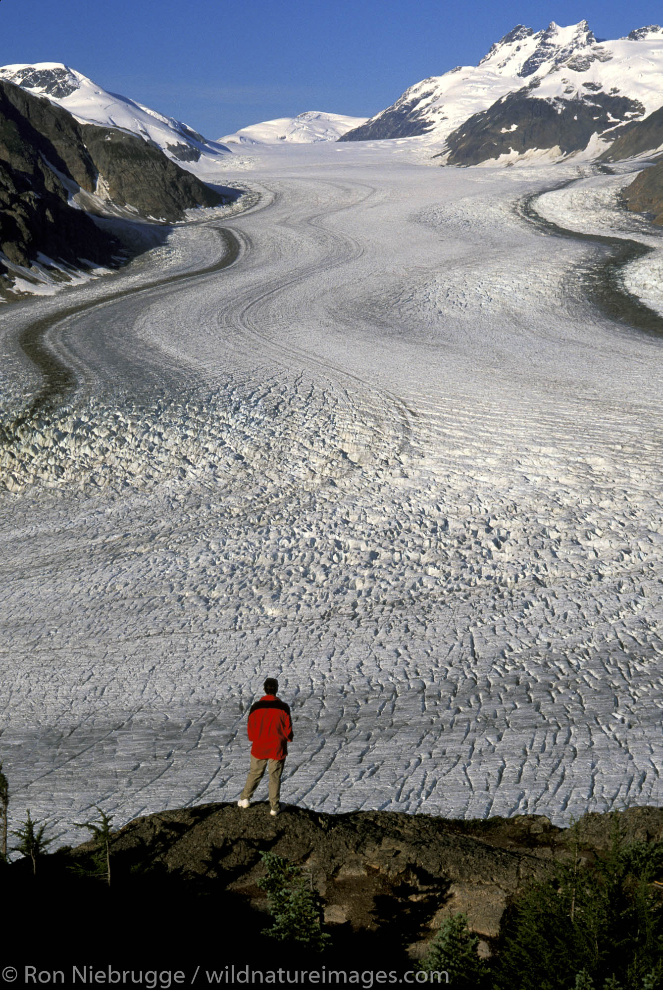 Hiker at Salmon Glacier Summit and the Alaska and British Columbia border near Hyder and Stewart.  (Model Released)