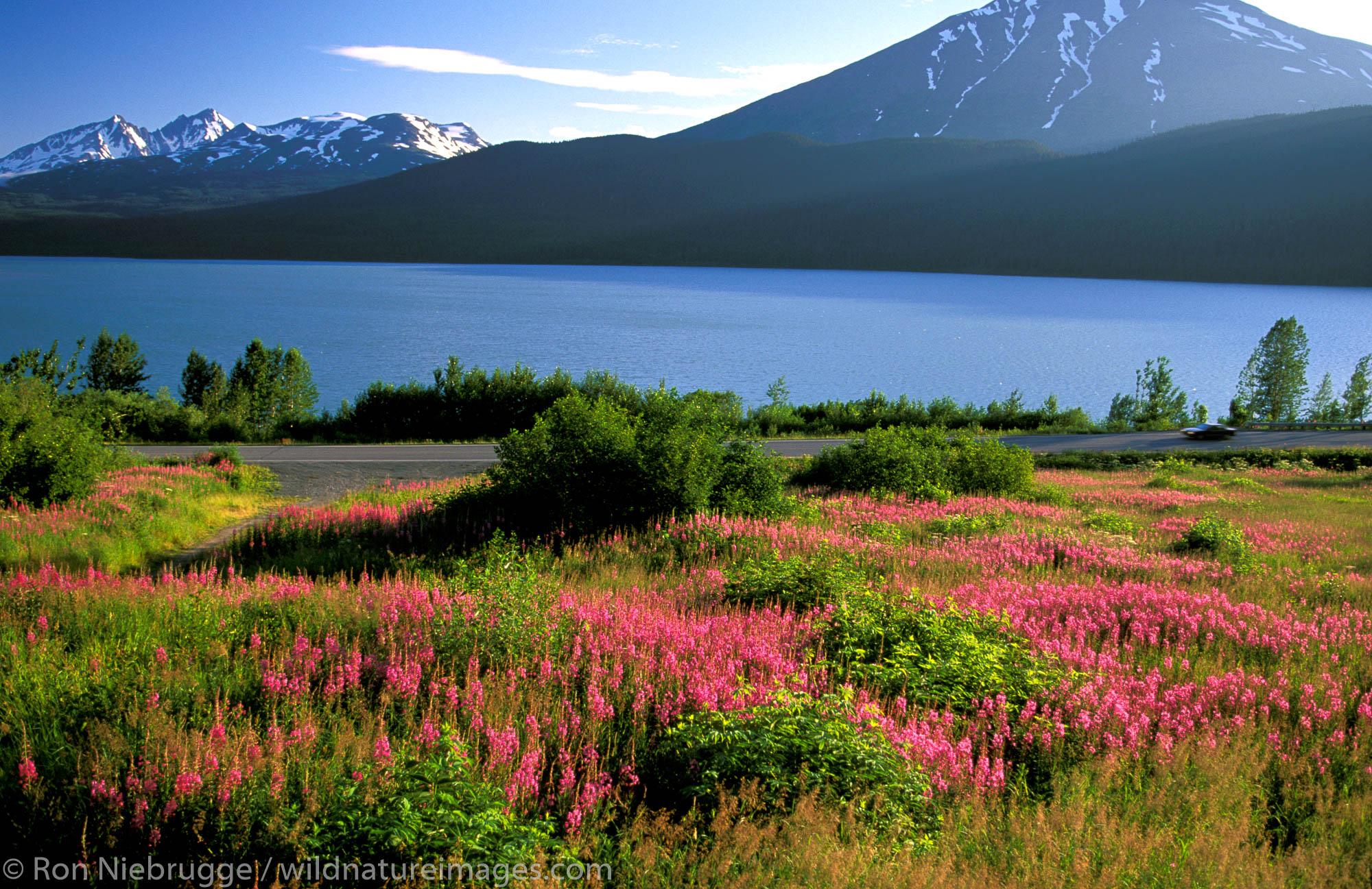 The Seward Highway passes along Kenai Lake, Alaska.