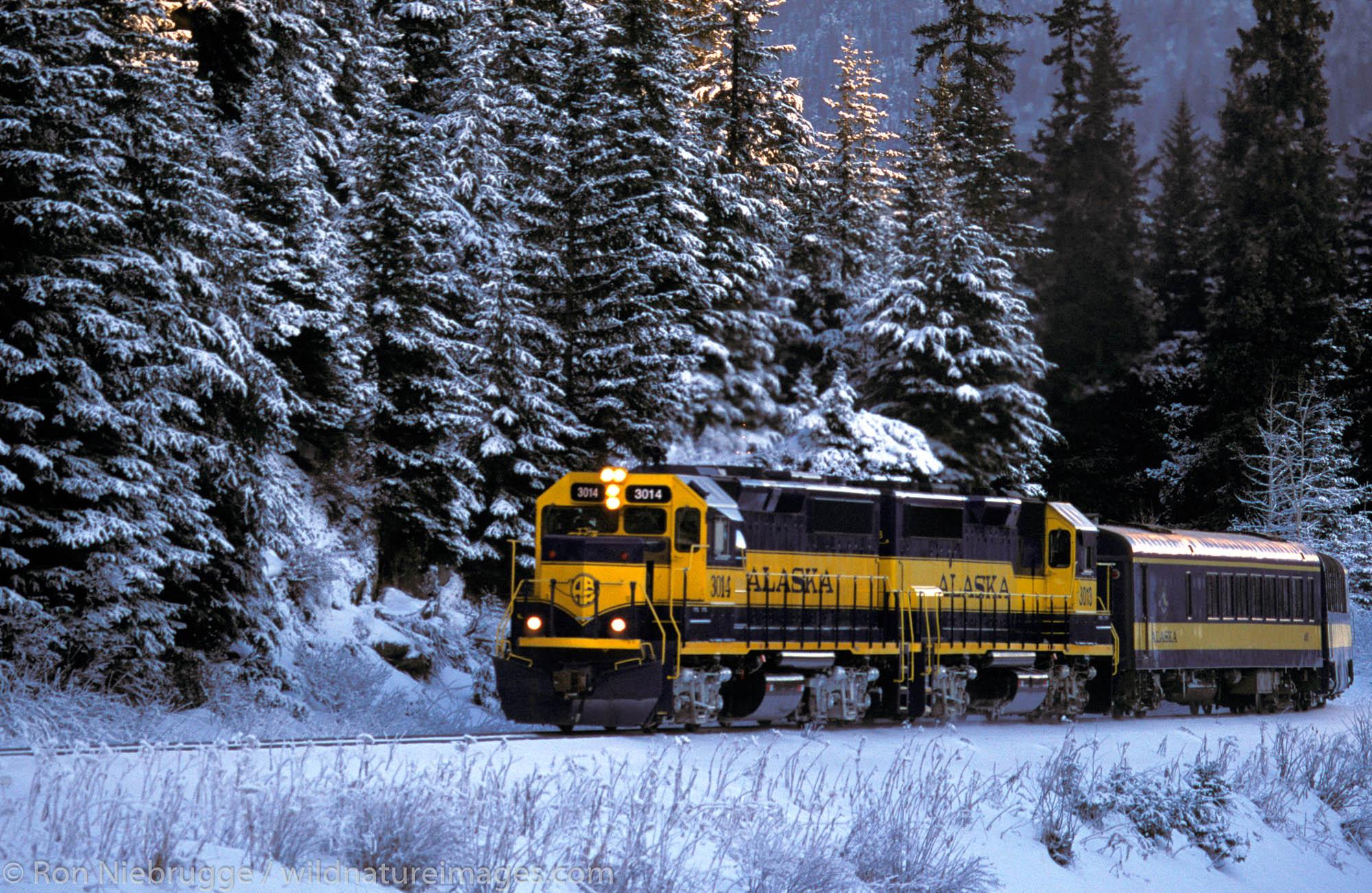 Winter Train.  Kenai Peninsula, Alaska.