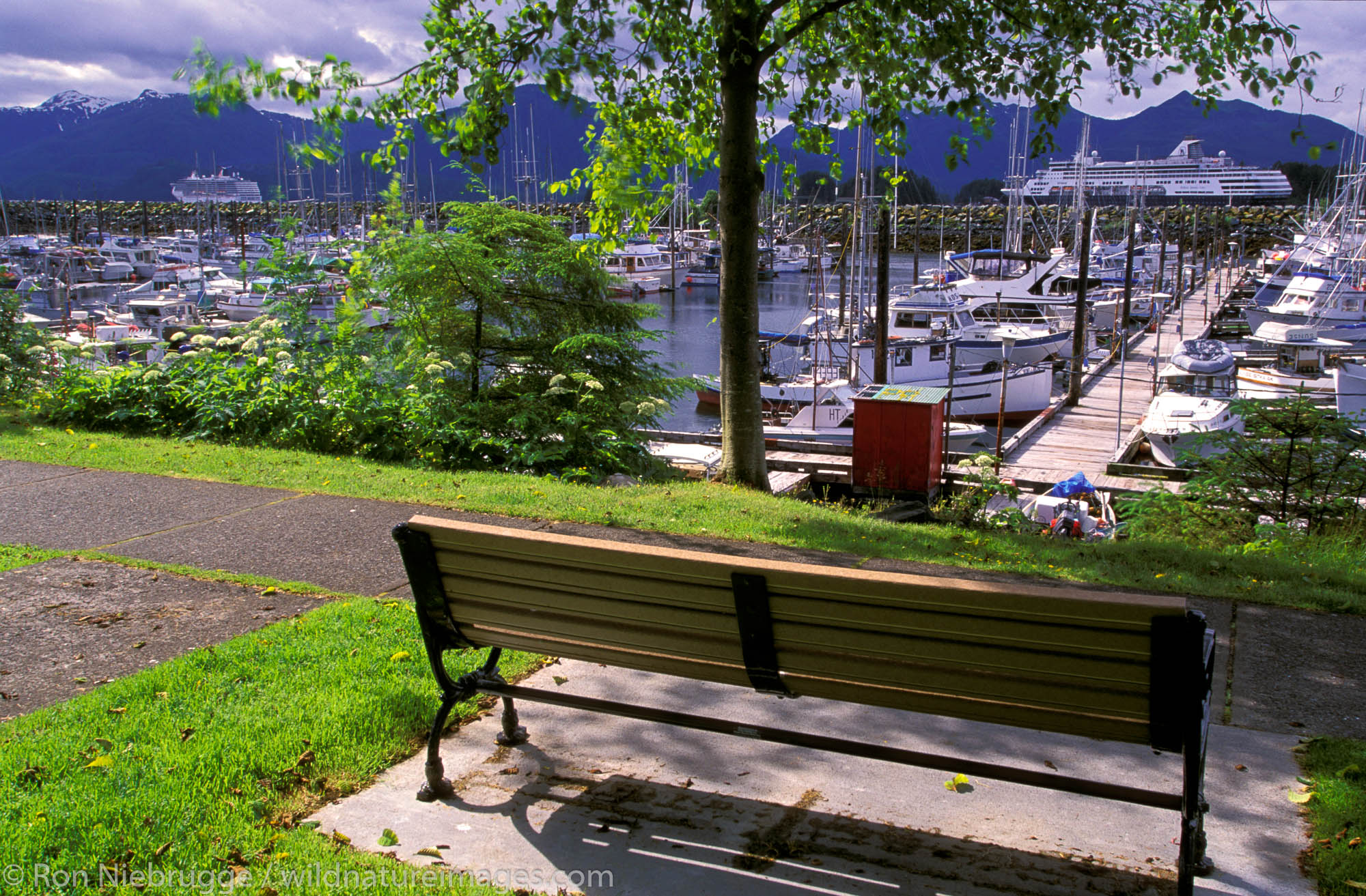 A bench near the boat harbor with cruiseships in the background, Sitka, Alaska.