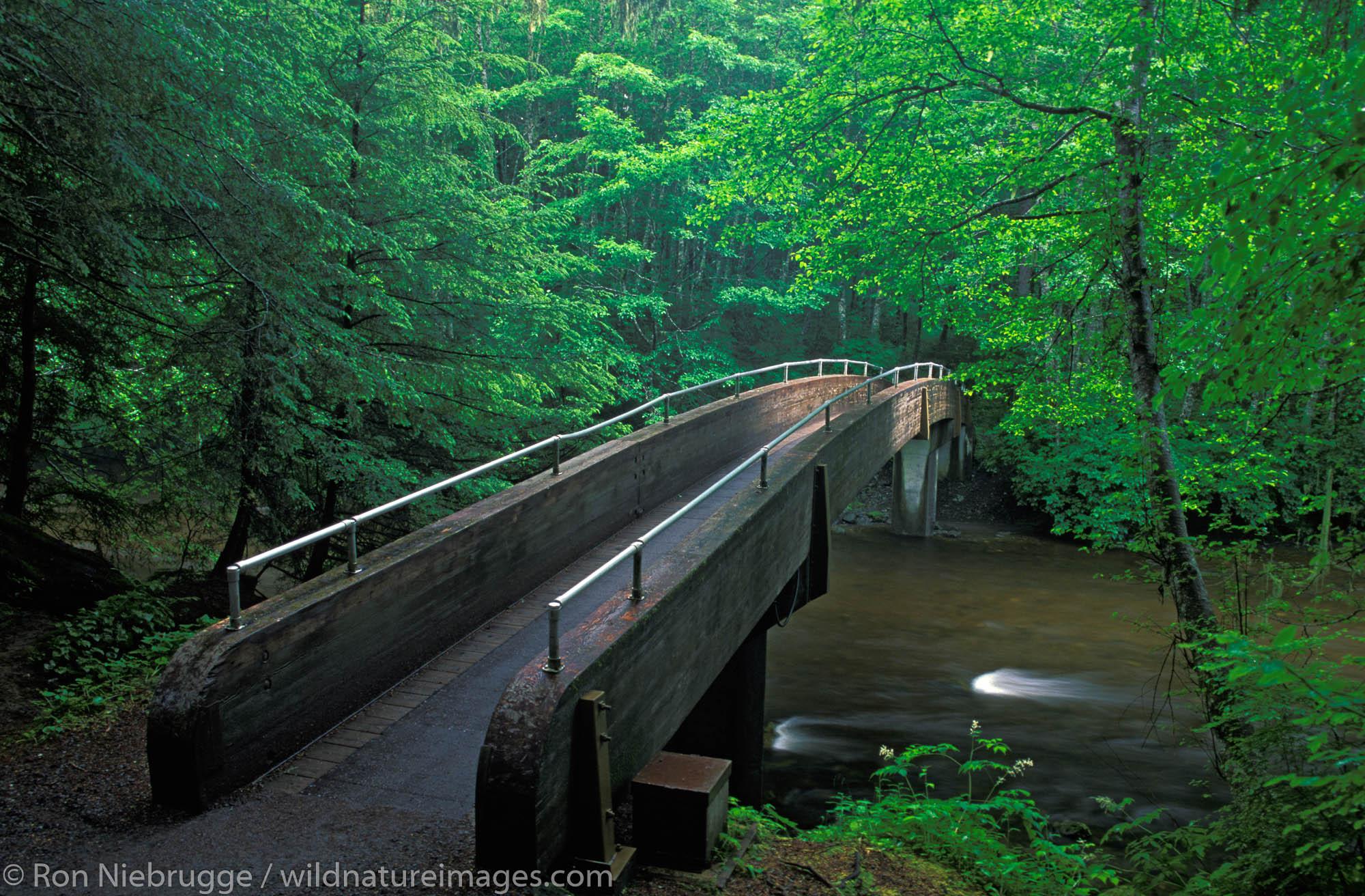 Bridge over Indian River, Sitka National Historical Park, Sitka, Alaska.