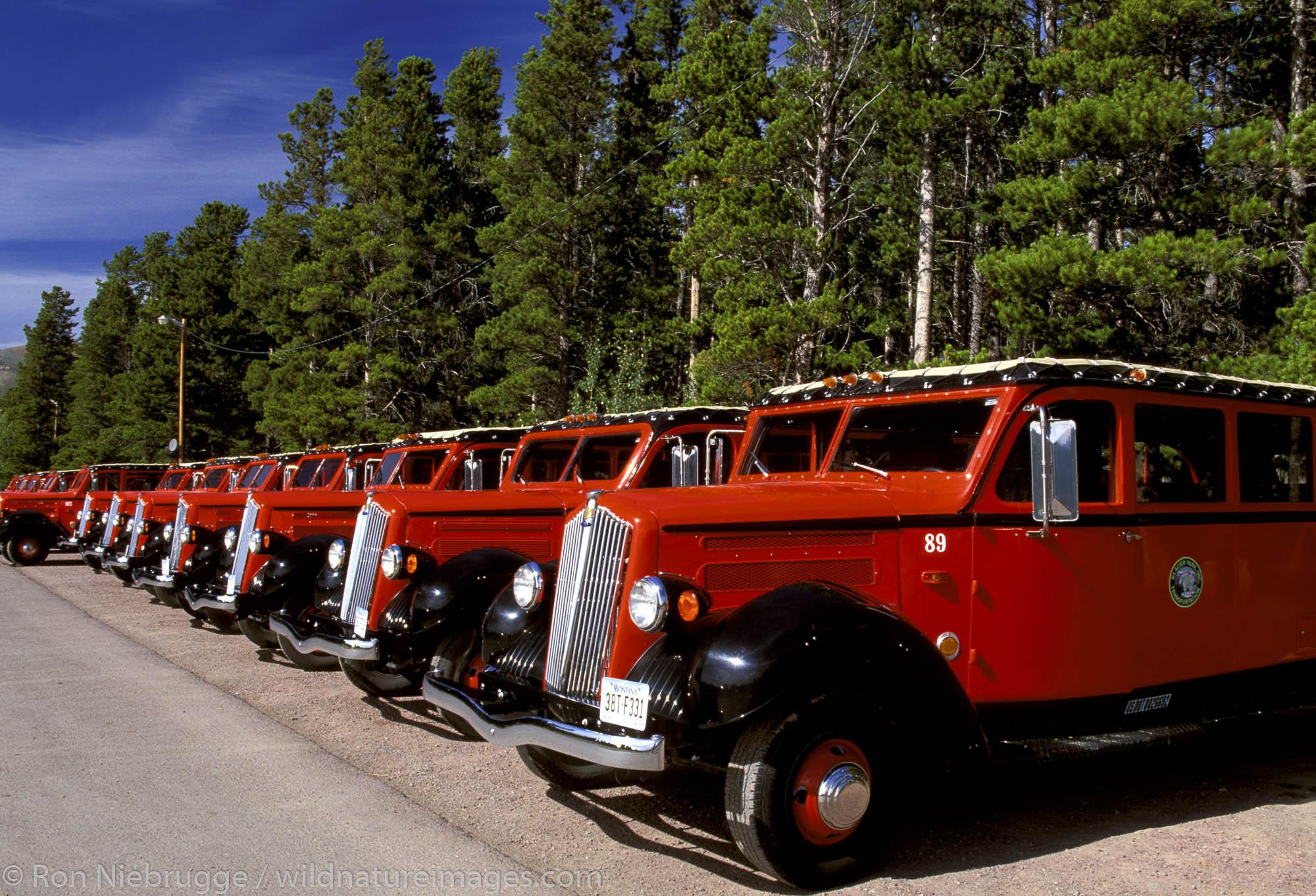 Propane powered tour buses. Glacier National Park, Montana.