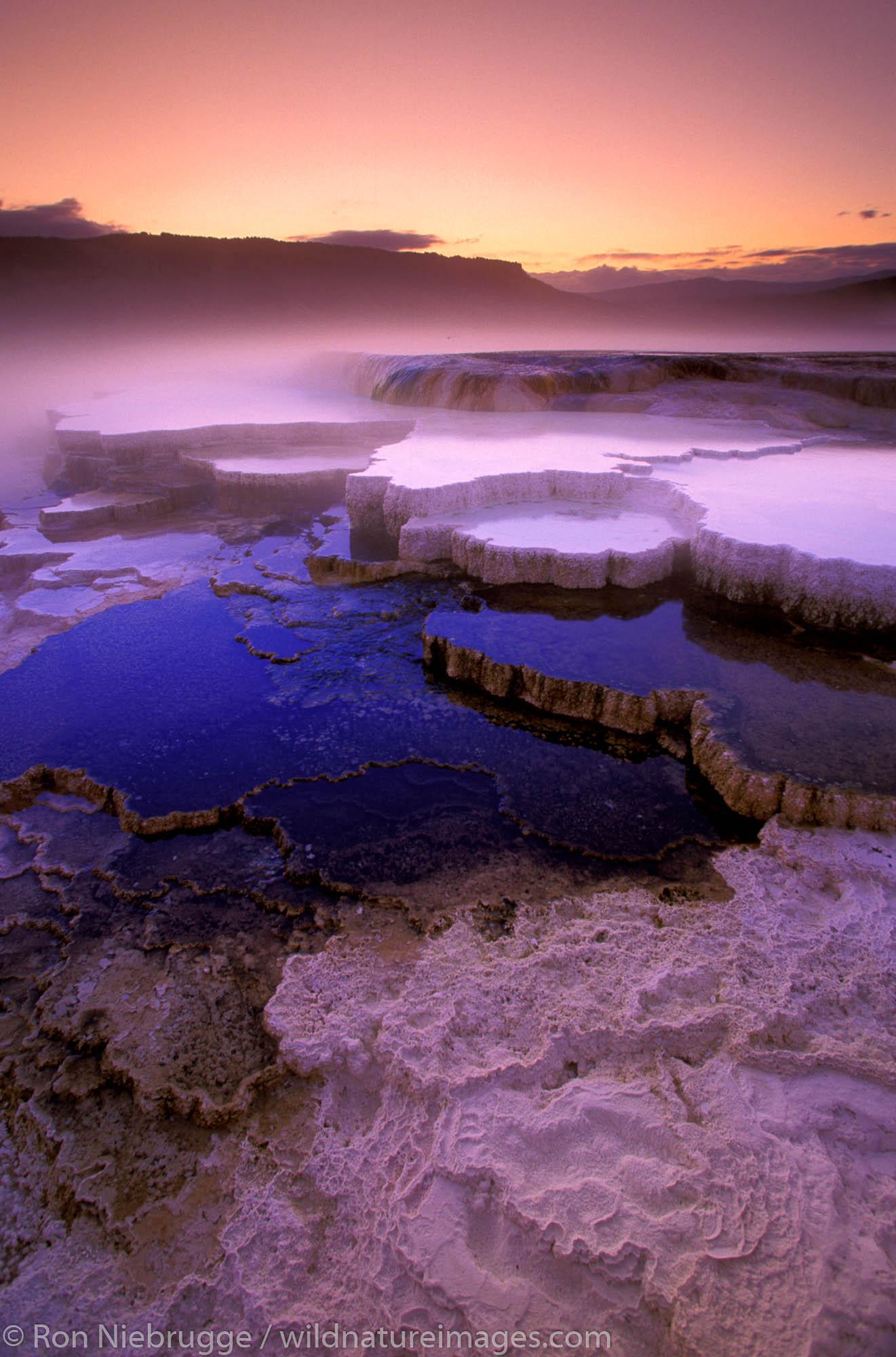 Mammoth Terraces.  Yellowstone National Park, Wyoming.