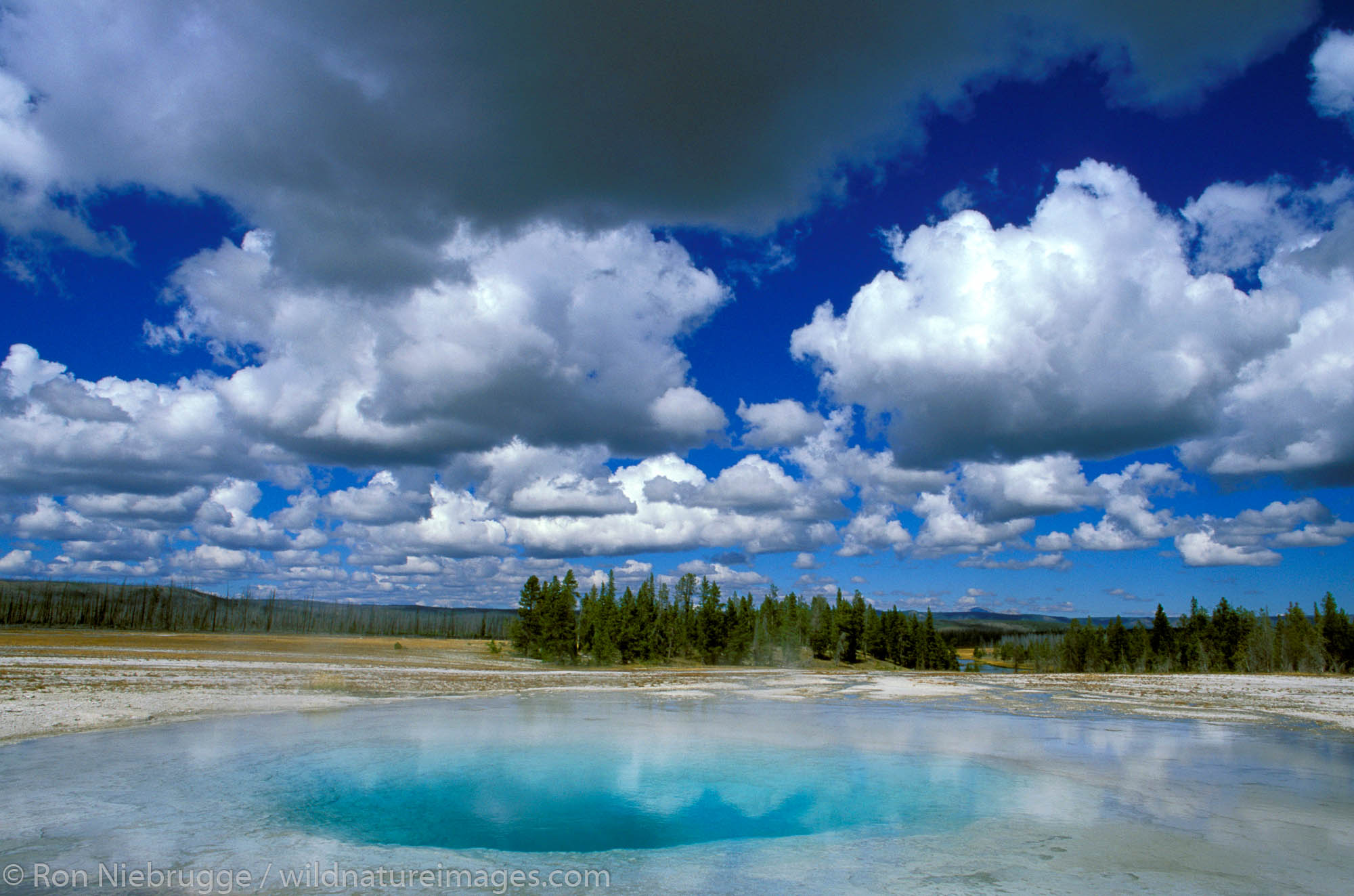 Morning Glory Pool, Midway Geyser Basin, Yellowstone National Park, Wyoming.